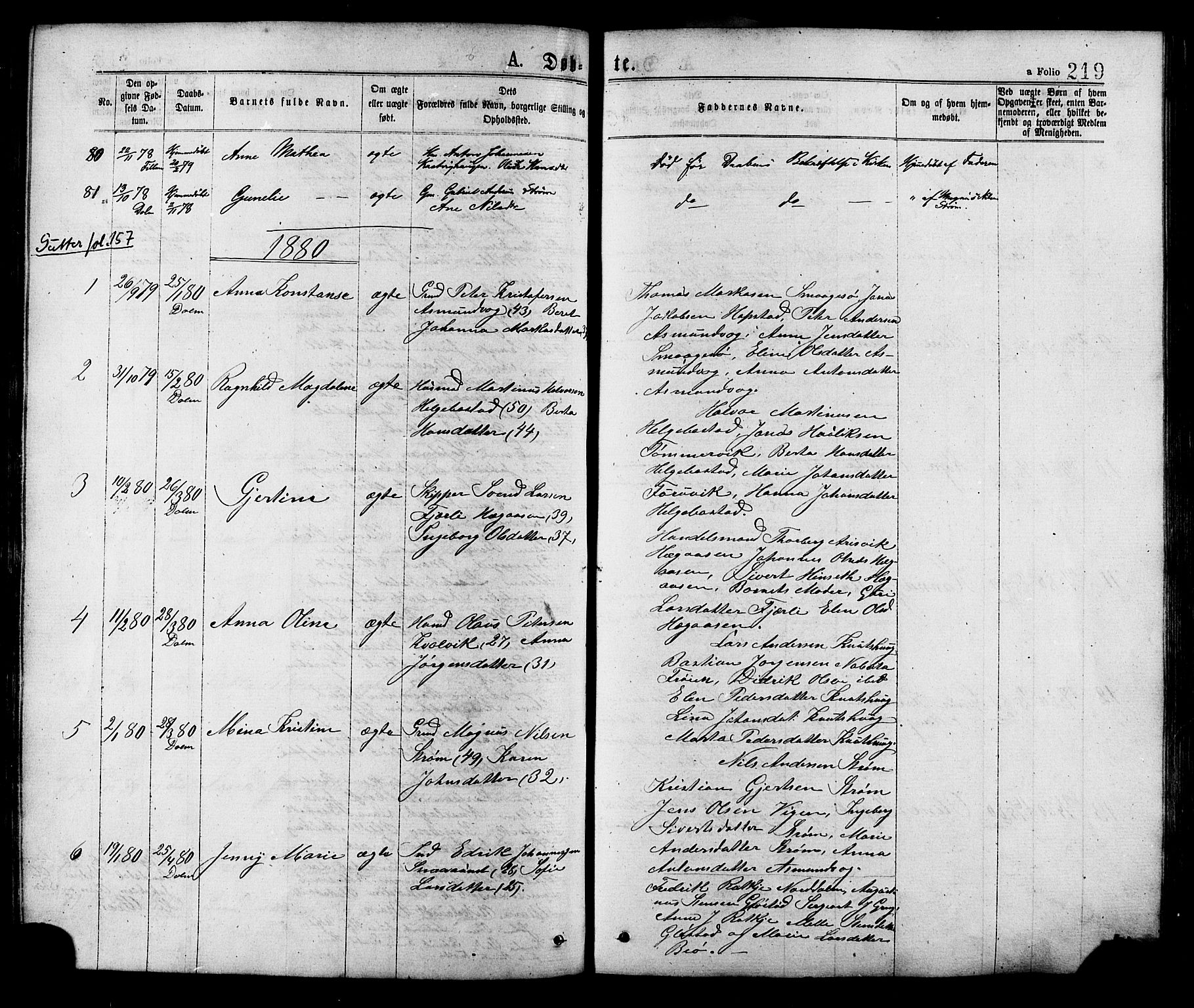 SAT, Ministerialprotokoller, klokkerbøker og fødselsregistre - Sør-Trøndelag, 634/L0532: Ministerialbok nr. 634A08, 1871-1881, s. 219