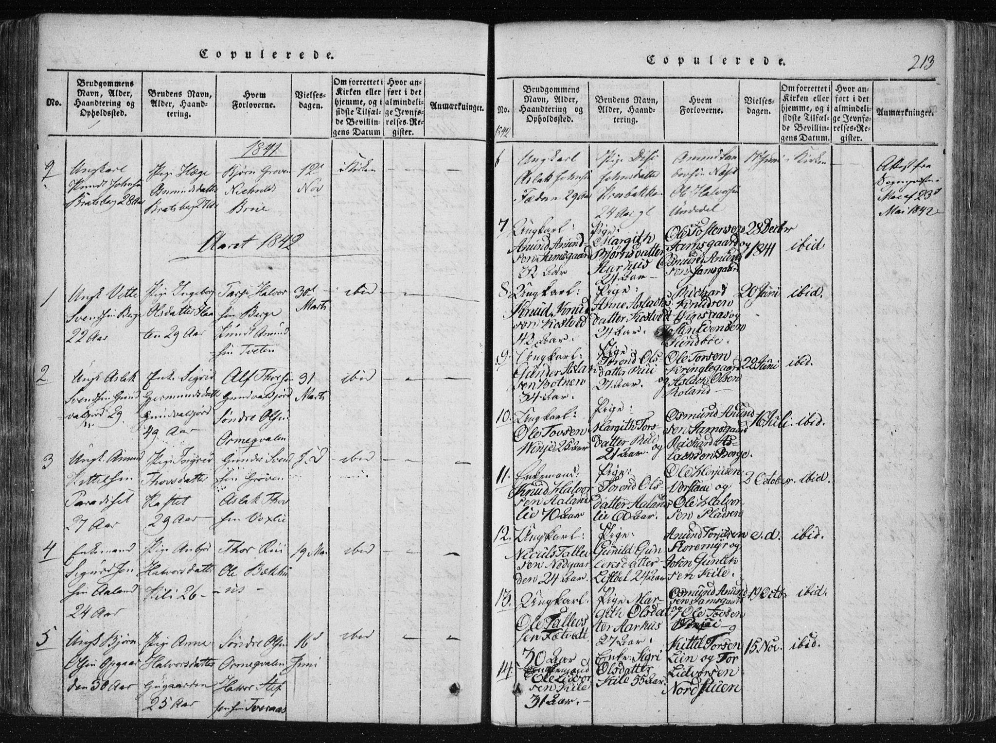 SAKO, Vinje kirkebøker, F/Fa/L0003: Ministerialbok nr. I 3, 1814-1843, s. 213