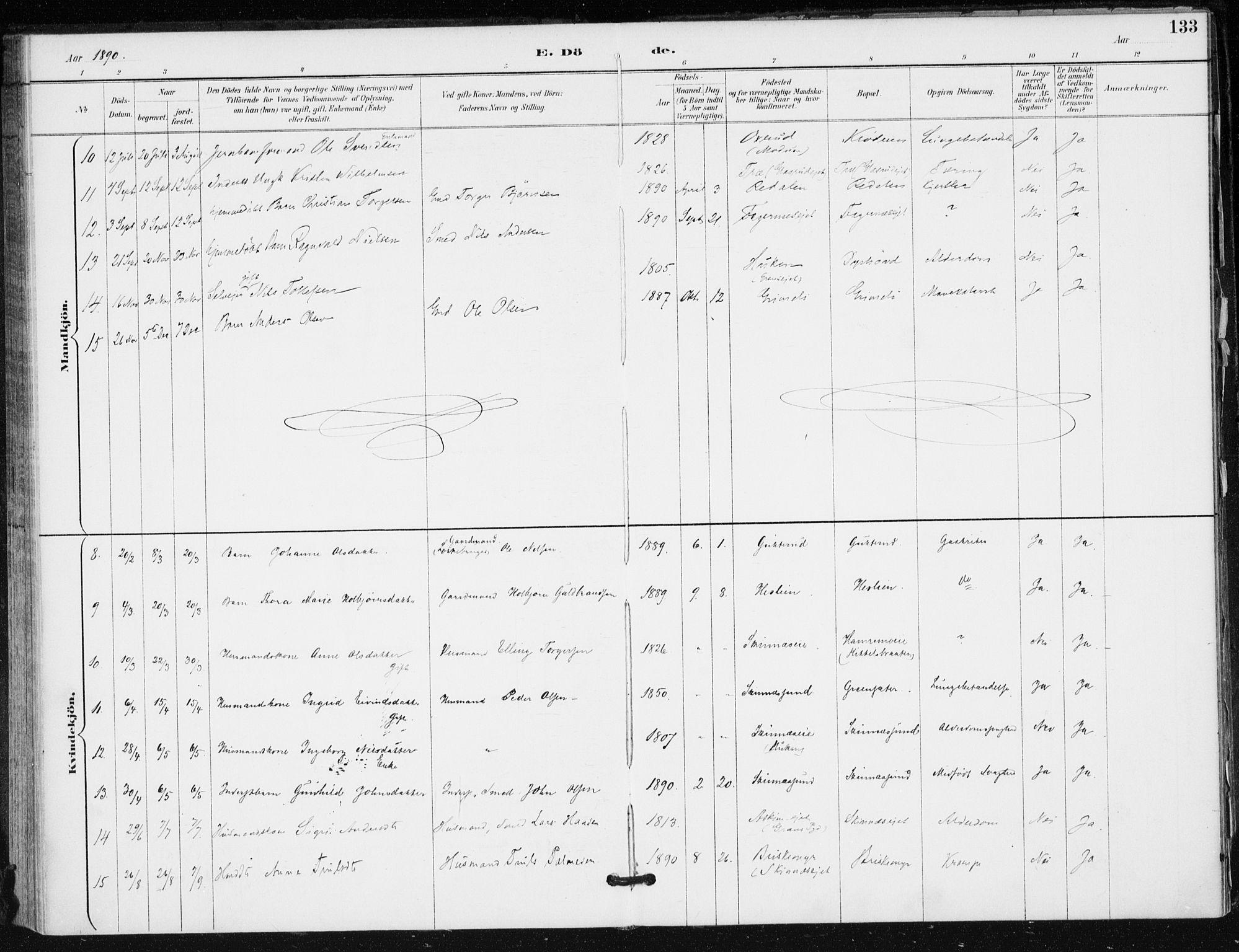 SAKO, Krødsherad kirkebøker, F/Fa/L0006: Ministerialbok nr. 6, 1889-1899, s. 133