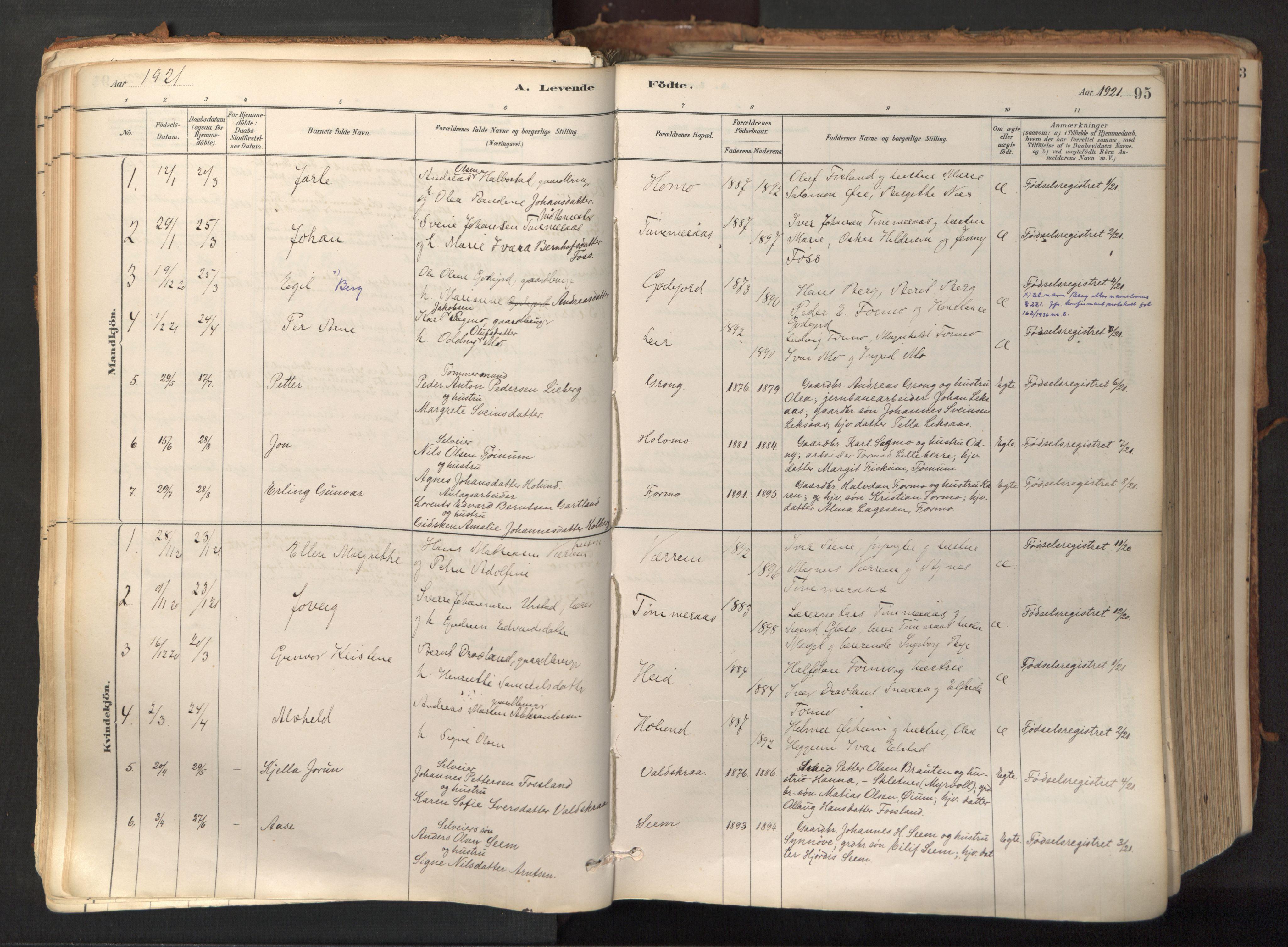 SAT, Ministerialprotokoller, klokkerbøker og fødselsregistre - Nord-Trøndelag, 758/L0519: Ministerialbok nr. 758A04, 1880-1926, s. 95