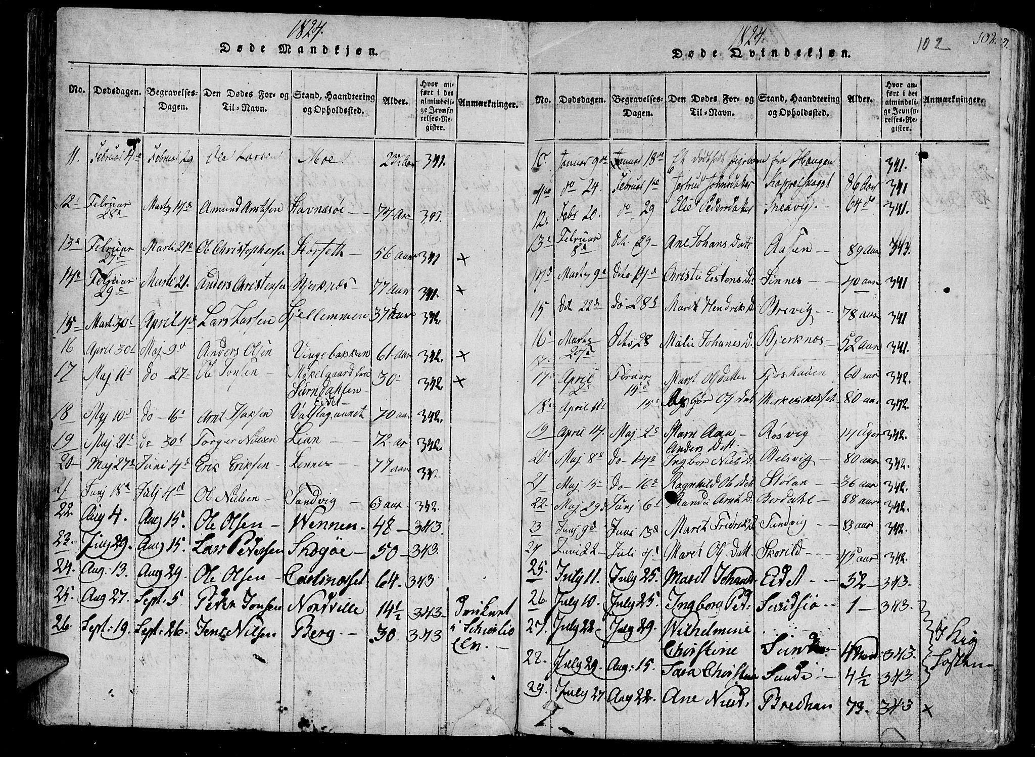 SAT, Ministerialprotokoller, klokkerbøker og fødselsregistre - Sør-Trøndelag, 630/L0491: Ministerialbok nr. 630A04, 1818-1830, s. 102
