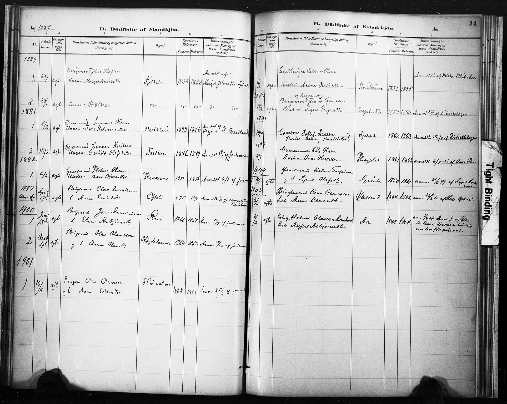 SAKO, Lårdal kirkebøker, F/Fc/L0002: Ministerialbok nr. III 2, 1887-1906, s. 34