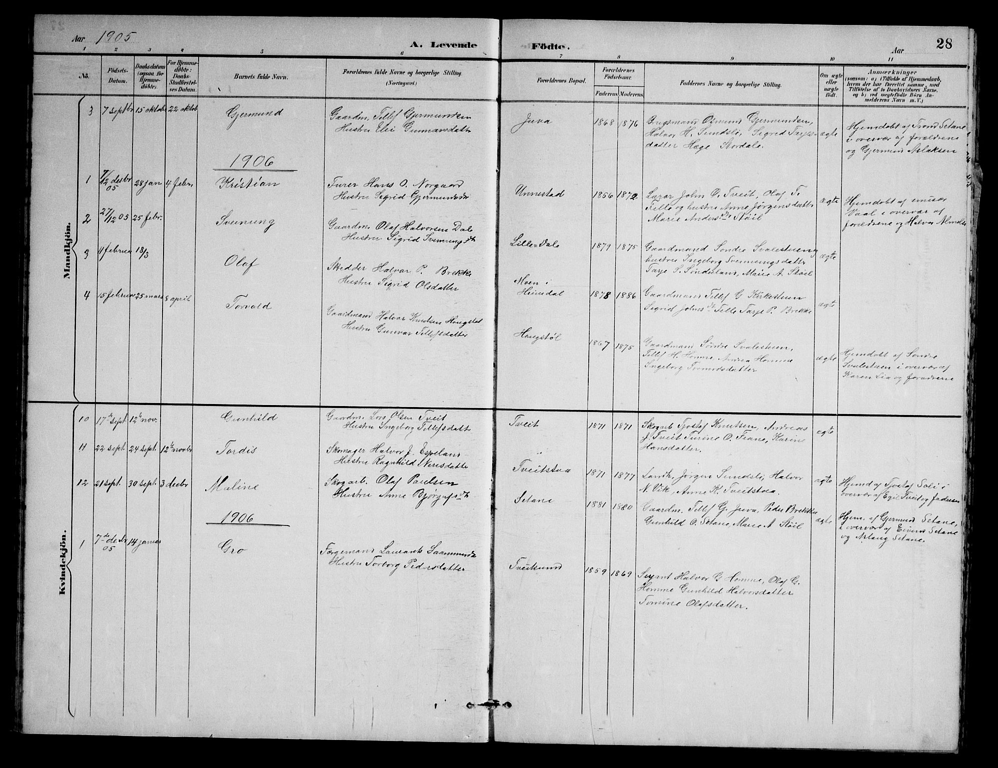SAKO, Nissedal kirkebøker, G/Gb/L0003: Klokkerbok nr. II 3, 1893-1928, s. 28