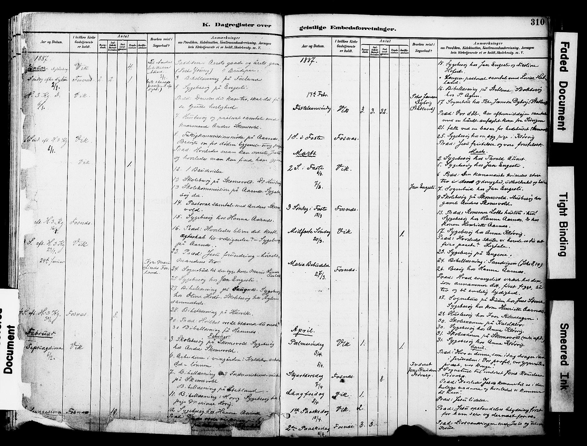 SAT, Ministerialprotokoller, klokkerbøker og fødselsregistre - Nord-Trøndelag, 774/L0628: Ministerialbok nr. 774A02, 1887-1903, s. 310