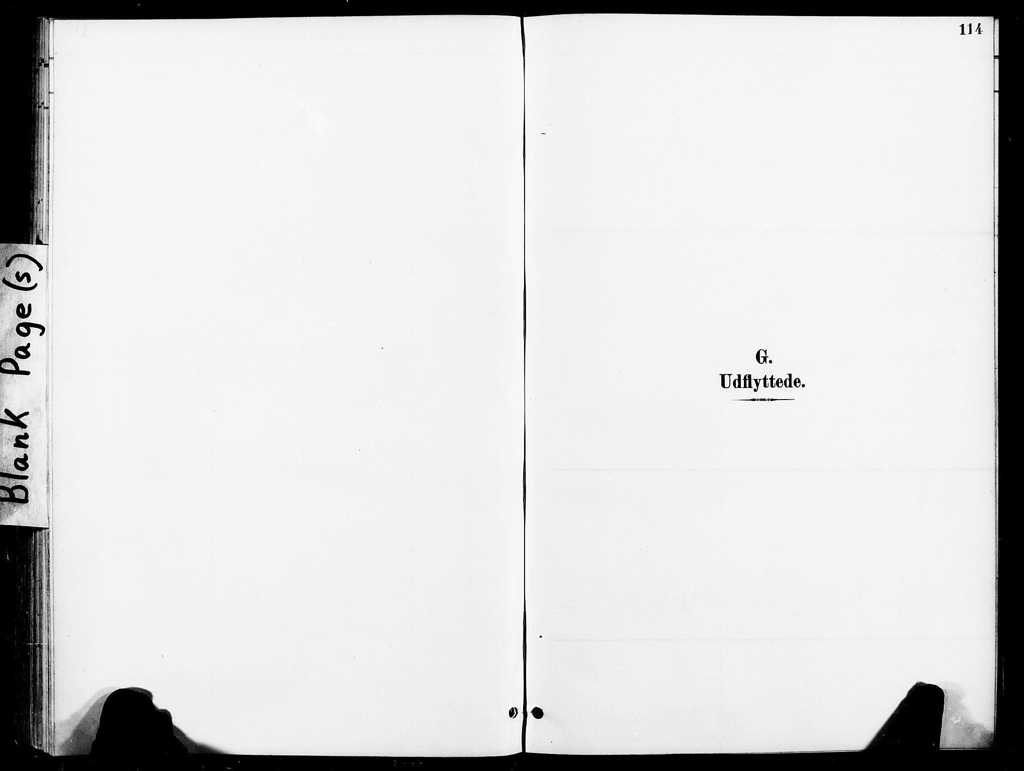 SAT, Ministerialprotokoller, klokkerbøker og fødselsregistre - Nord-Trøndelag, 740/L0379: Ministerialbok nr. 740A02, 1895-1907, s. 114