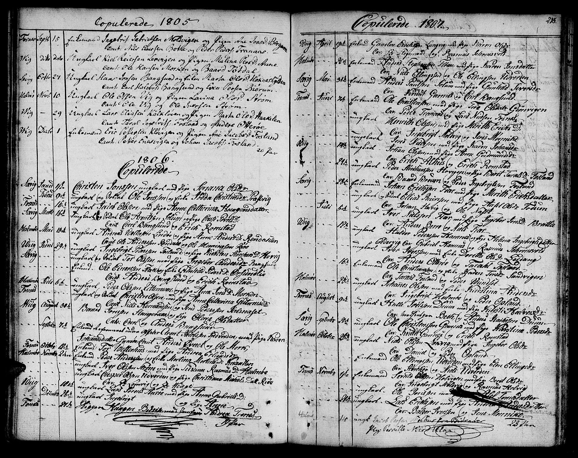 SAT, Ministerialprotokoller, klokkerbøker og fødselsregistre - Nord-Trøndelag, 773/L0608: Ministerialbok nr. 773A02, 1784-1816, s. 213