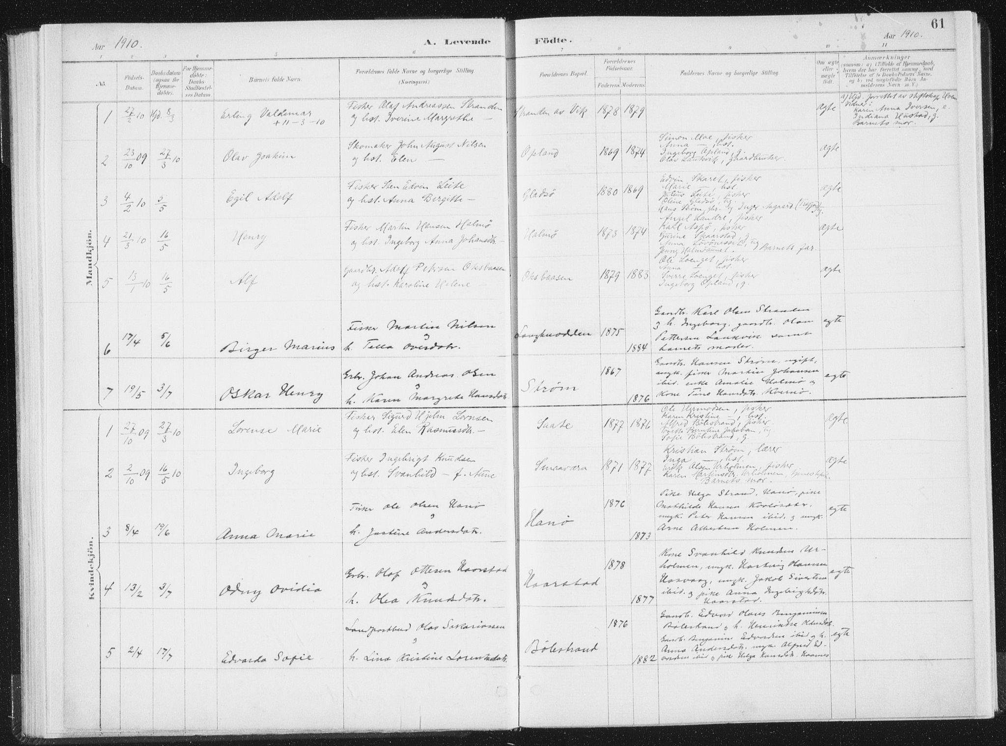SAT, Ministerialprotokoller, klokkerbøker og fødselsregistre - Nord-Trøndelag, 771/L0597: Ministerialbok nr. 771A04, 1885-1910, s. 61