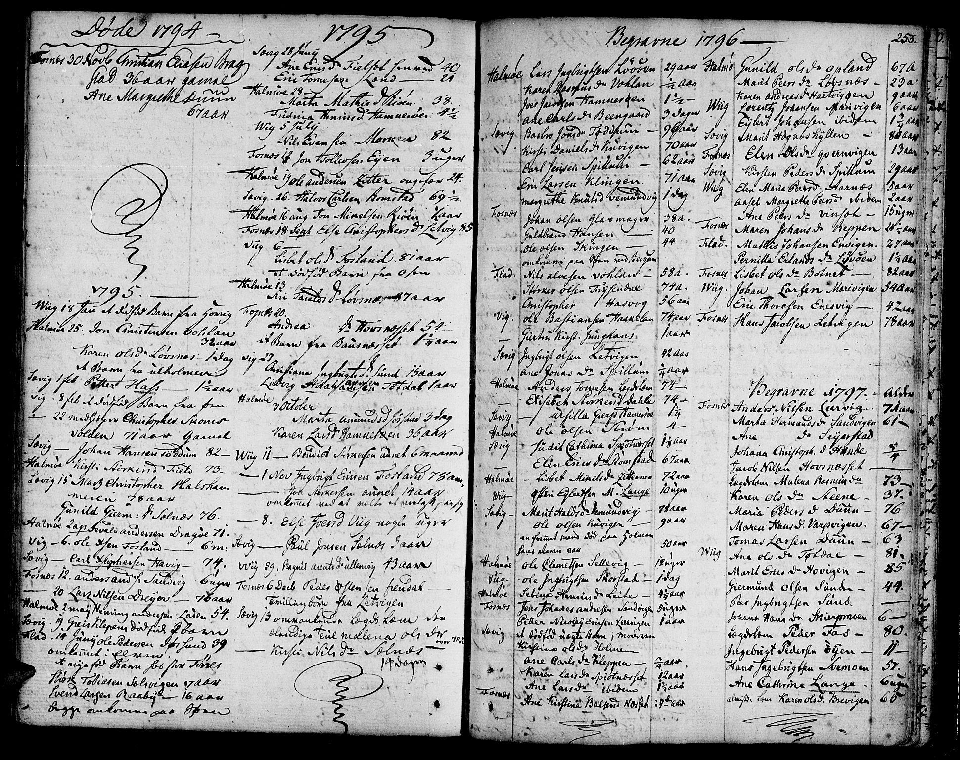 SAT, Ministerialprotokoller, klokkerbøker og fødselsregistre - Nord-Trøndelag, 773/L0608: Ministerialbok nr. 773A02, 1784-1816, s. 253