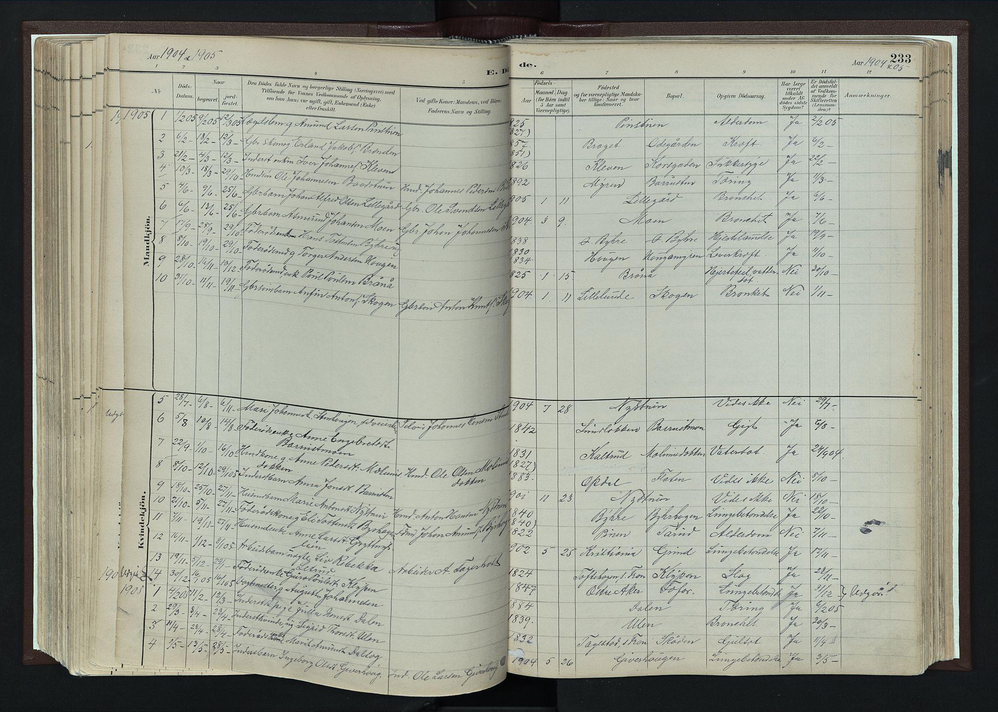 SAH, Nord-Fron prestekontor, Ministerialbok nr. 4, 1884-1914, s. 233