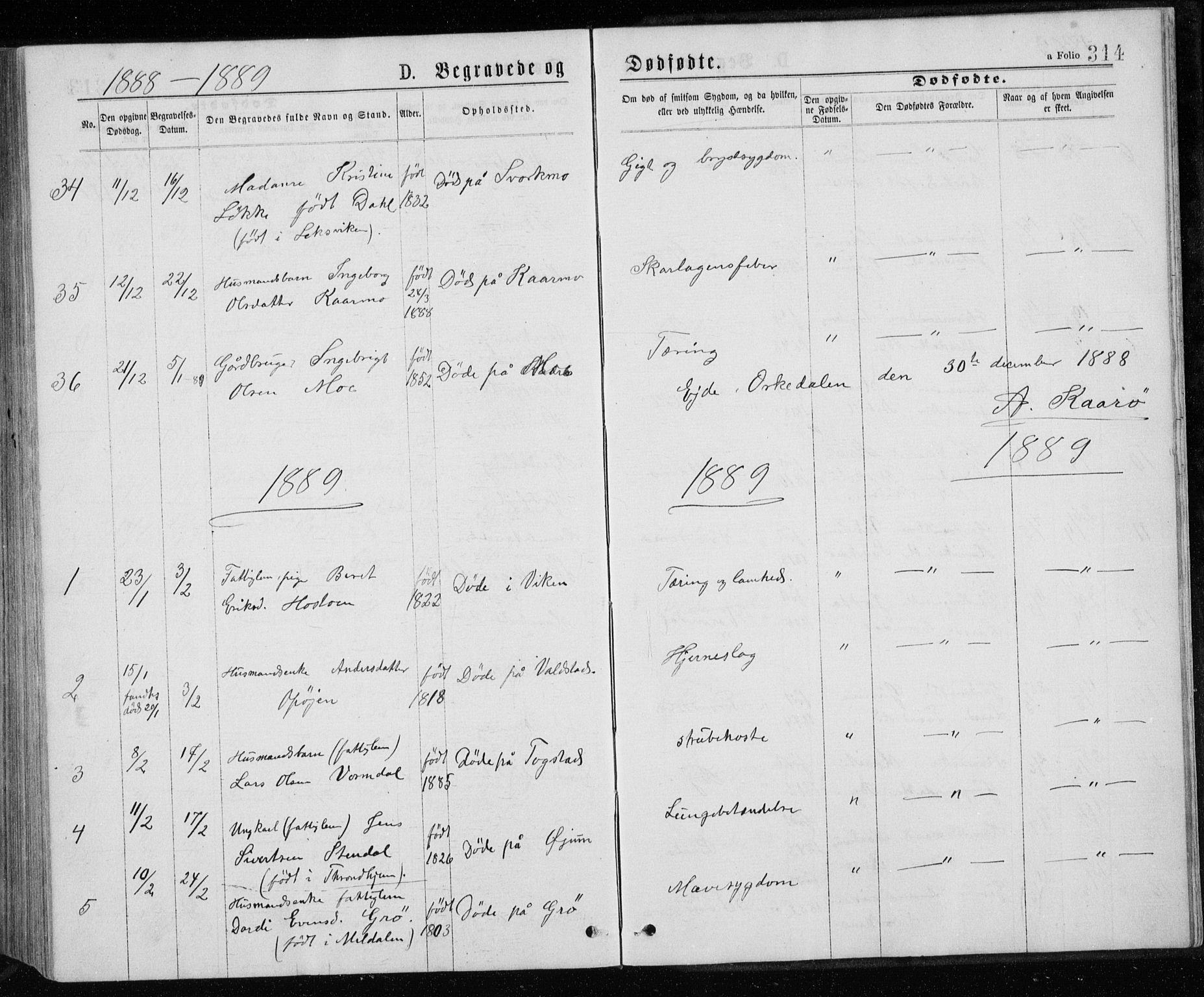SAT, Ministerialprotokoller, klokkerbøker og fødselsregistre - Sør-Trøndelag, 671/L0843: Klokkerbok nr. 671C02, 1873-1892, s. 314