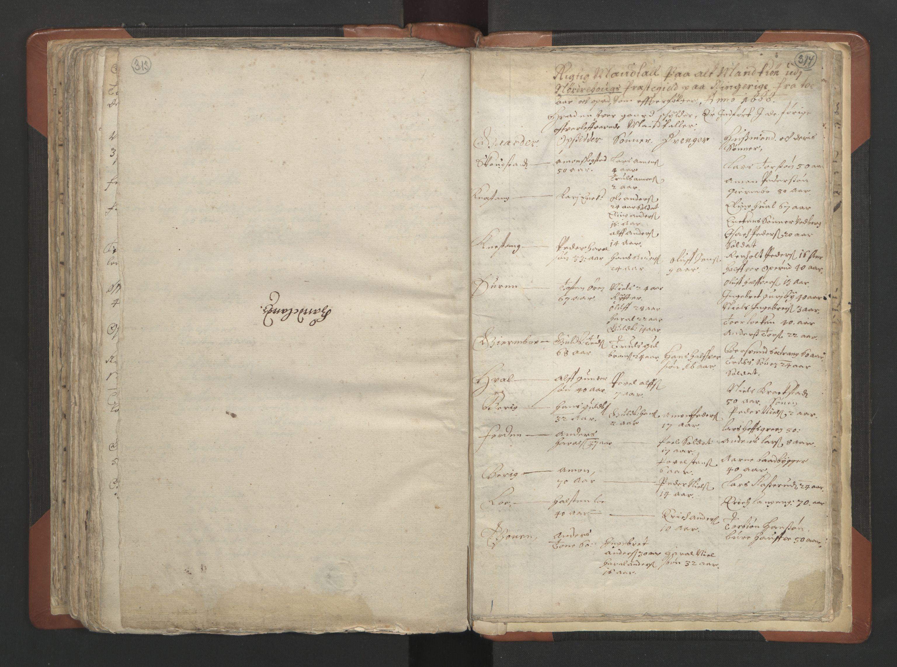 RA, Sogneprestenes manntall 1664-1666, nr. 7: Hadeland prosti, 1664-1666, s. 313-314