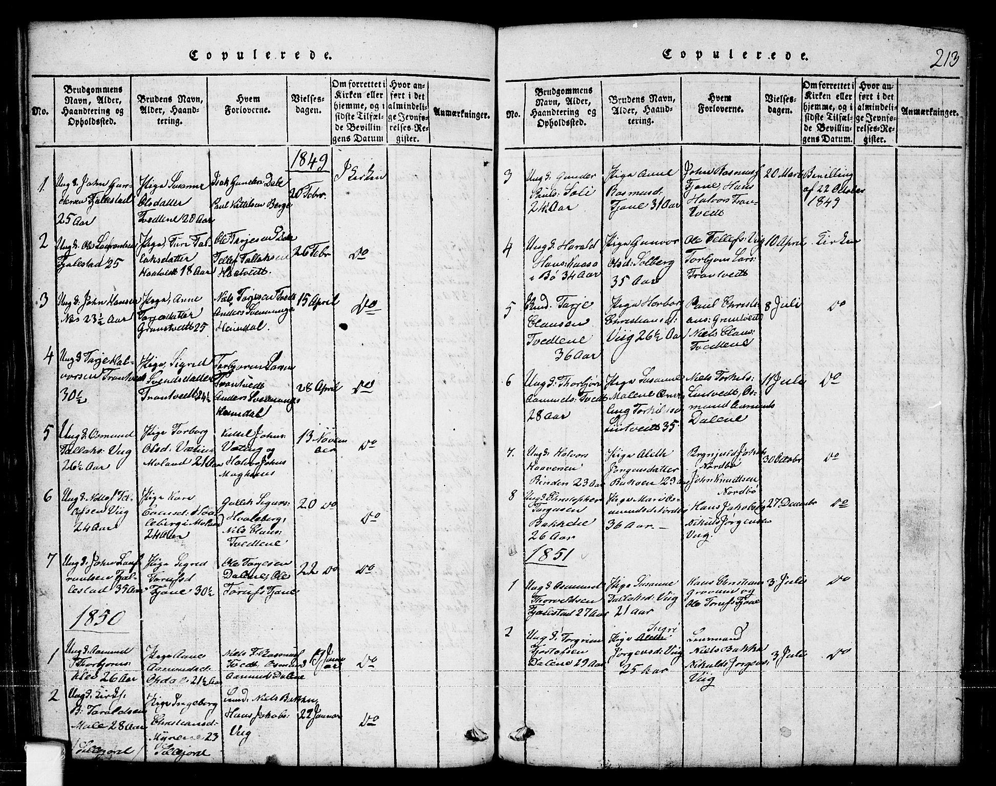 SAKO, Nissedal kirkebøker, G/Ga/L0001: Klokkerbok nr. I 1, 1814-1860, s. 213