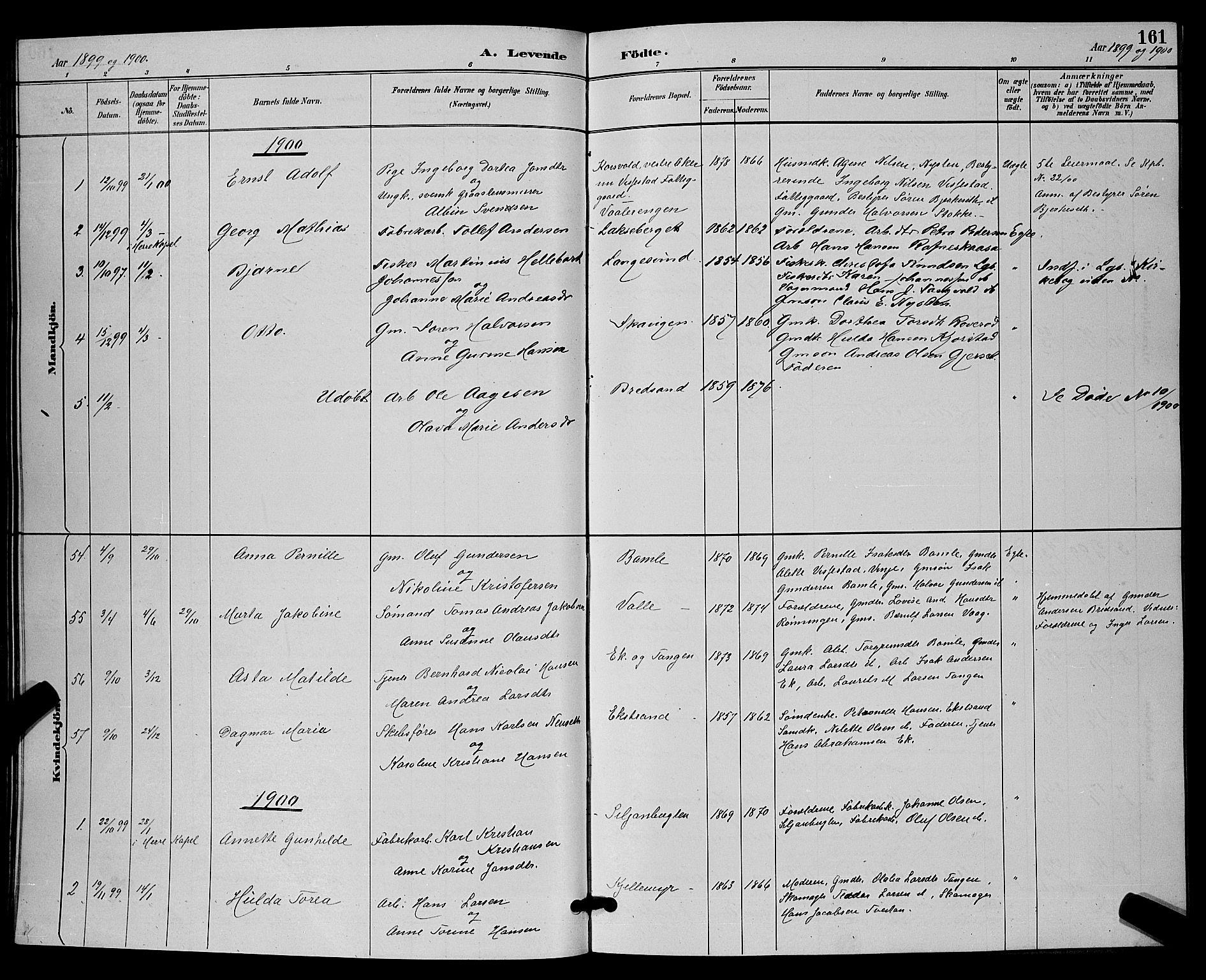 SAKO, Bamble kirkebøker, G/Ga/L0009: Klokkerbok nr. I 9, 1888-1900, s. 161