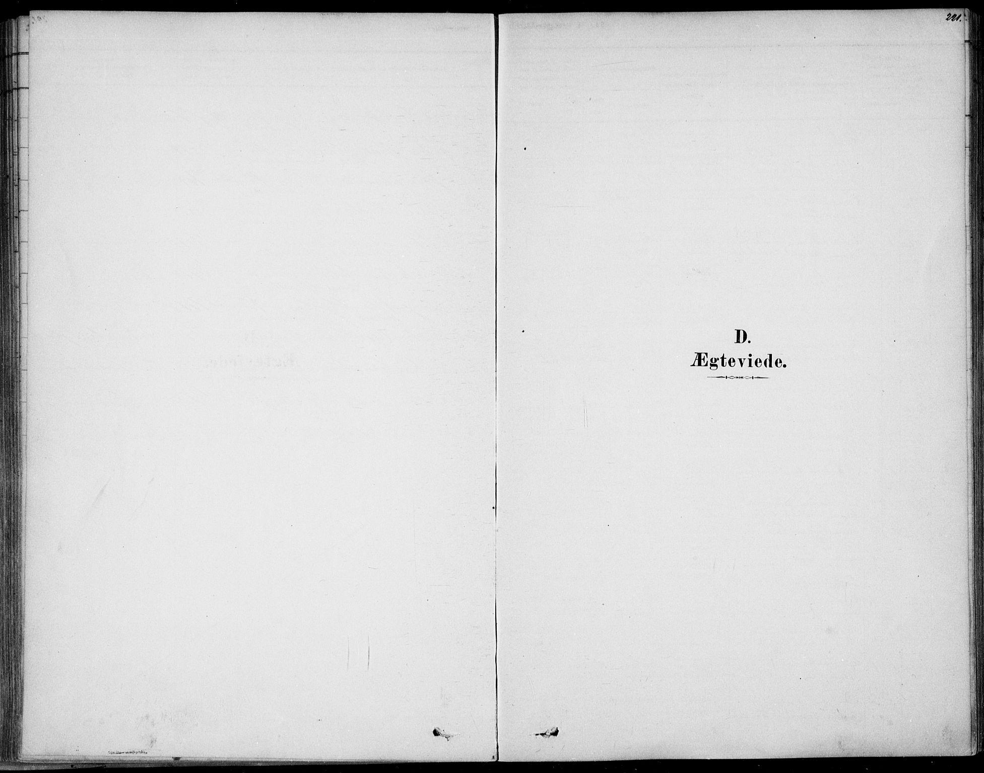SAKO, Sem kirkebøker, F/Fb/L0004: Ministerialbok nr. II 4, 1878-1891, s. 221