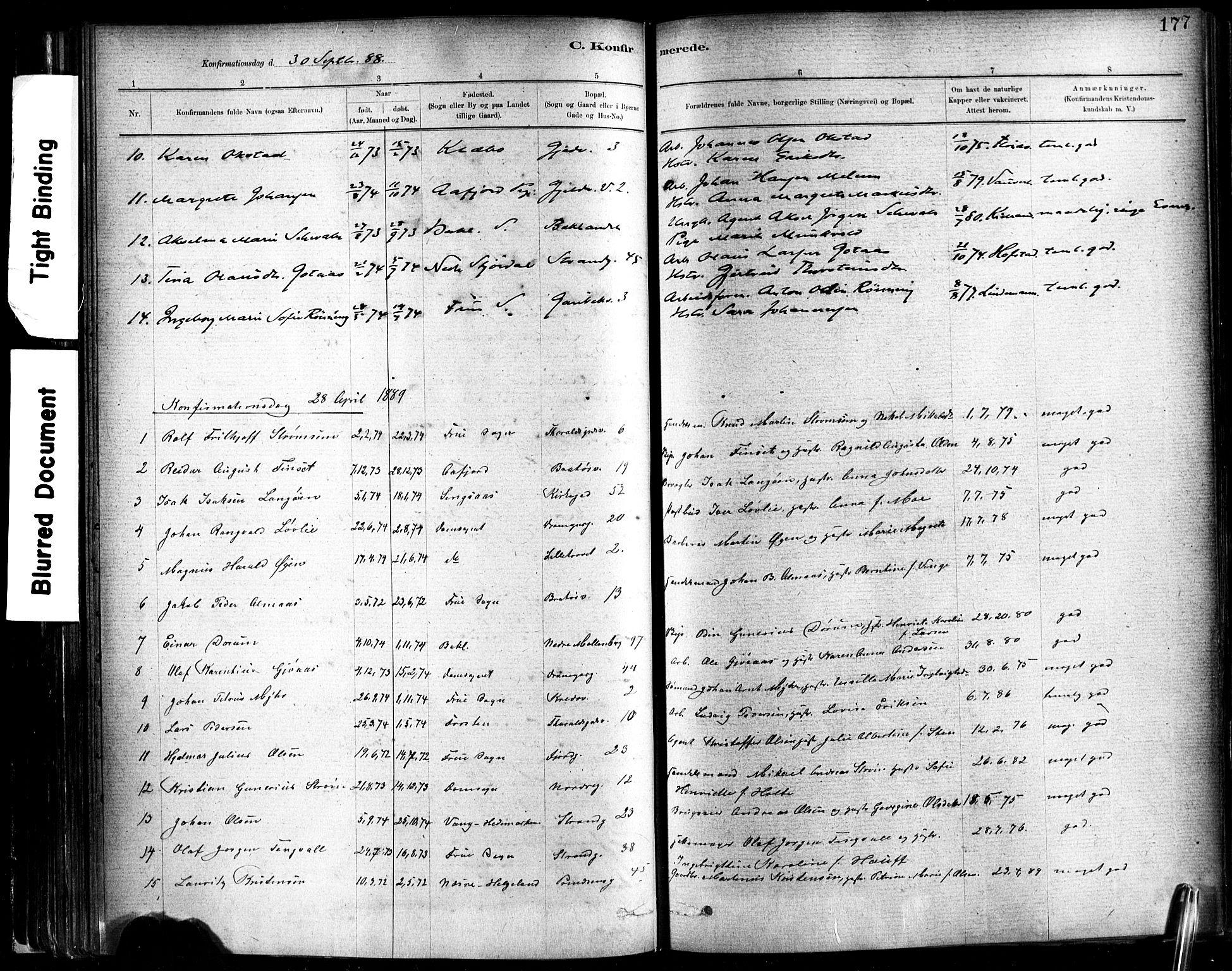 SAT, Ministerialprotokoller, klokkerbøker og fødselsregistre - Sør-Trøndelag, 602/L0119: Ministerialbok nr. 602A17, 1880-1901, s. 177
