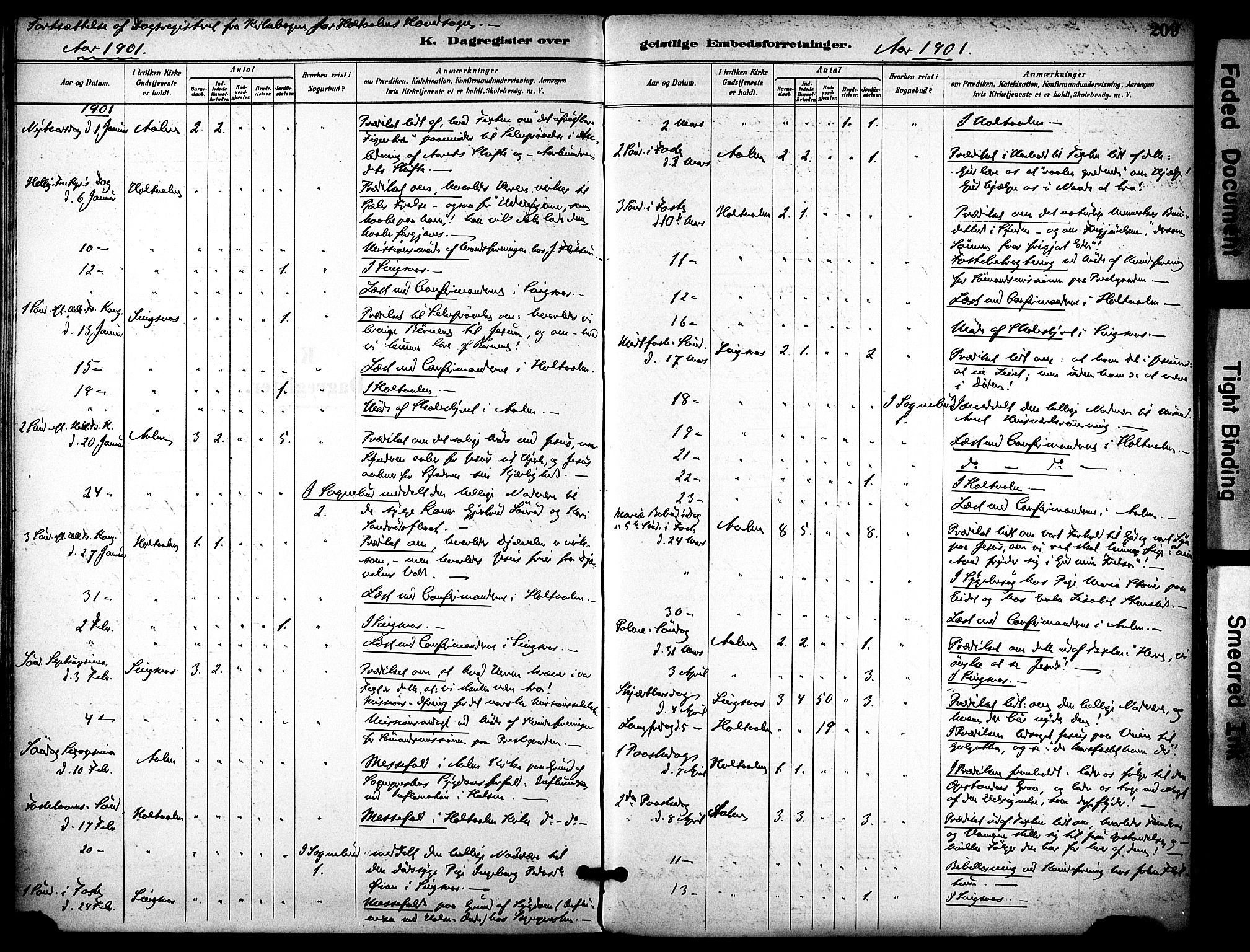 SAT, Ministerialprotokoller, klokkerbøker og fødselsregistre - Sør-Trøndelag, 686/L0984: Ministerialbok nr. 686A02, 1891-1906, s. 209