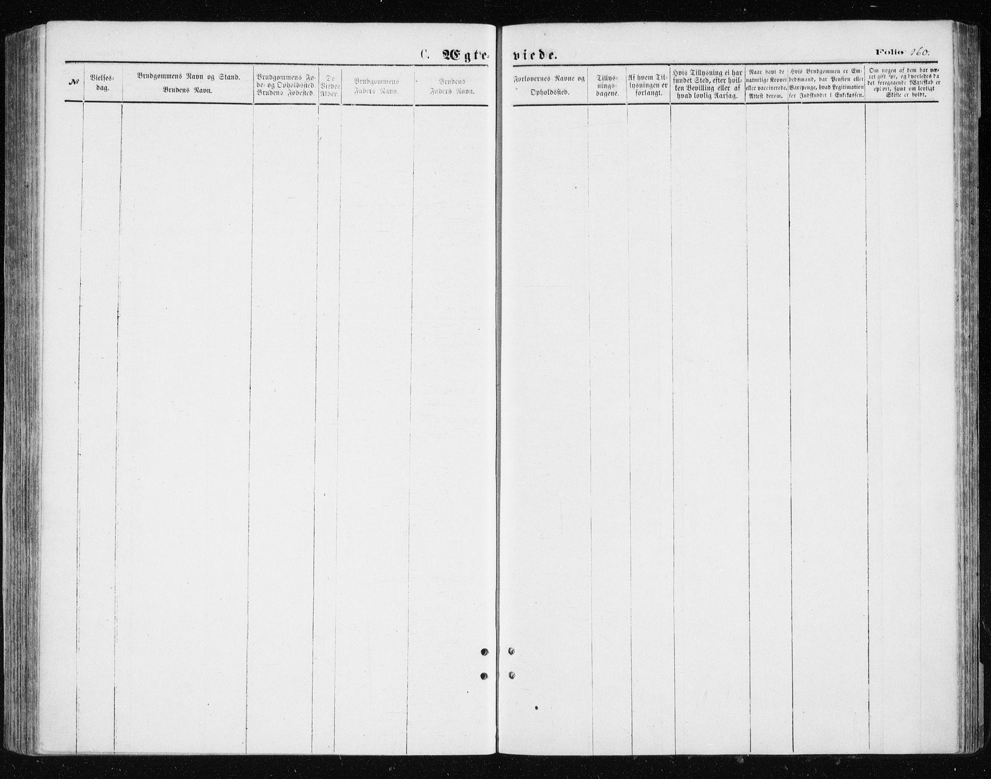 SATØ, Tromsøysund sokneprestkontor, G/Ga/L0003kirke: Ministerialbok nr. 3, 1875-1880, s. 160