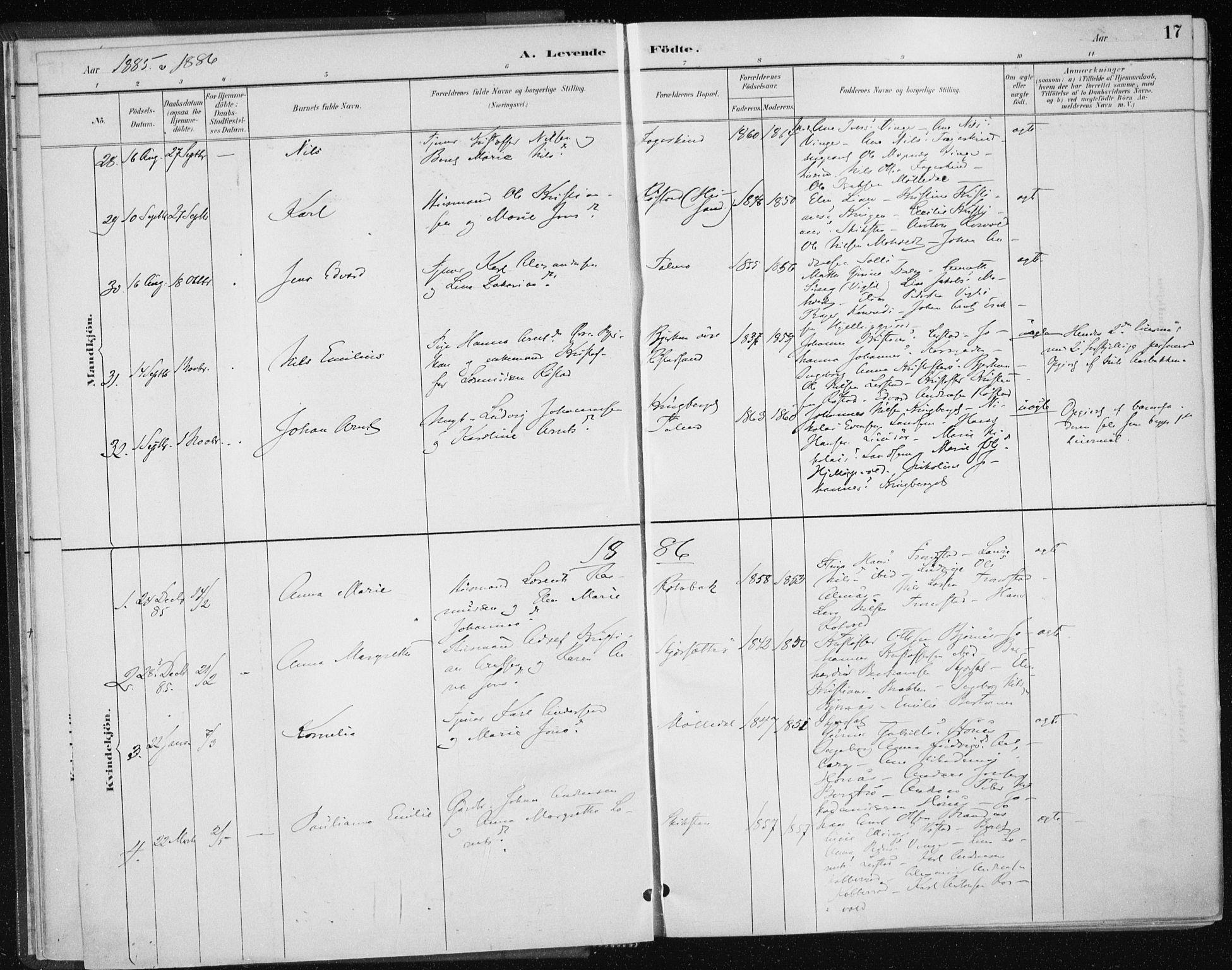 SAT, Ministerialprotokoller, klokkerbøker og fødselsregistre - Nord-Trøndelag, 701/L0010: Ministerialbok nr. 701A10, 1883-1899, s. 17