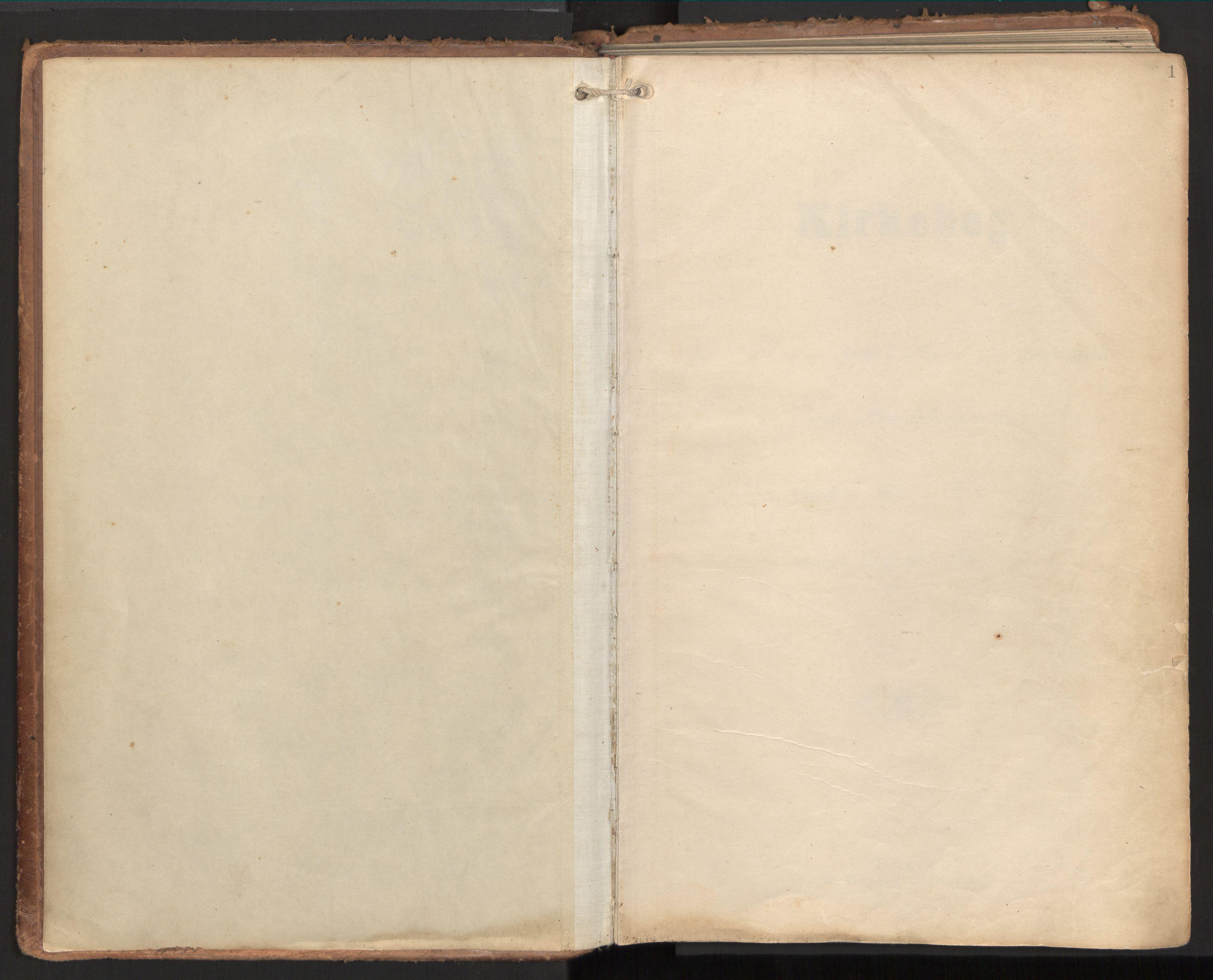 SAT, Ministerialprotokoller, klokkerbøker og fødselsregistre - Nord-Trøndelag, 784/L0677: Ministerialbok nr. 784A12, 1900-1920, s. 1