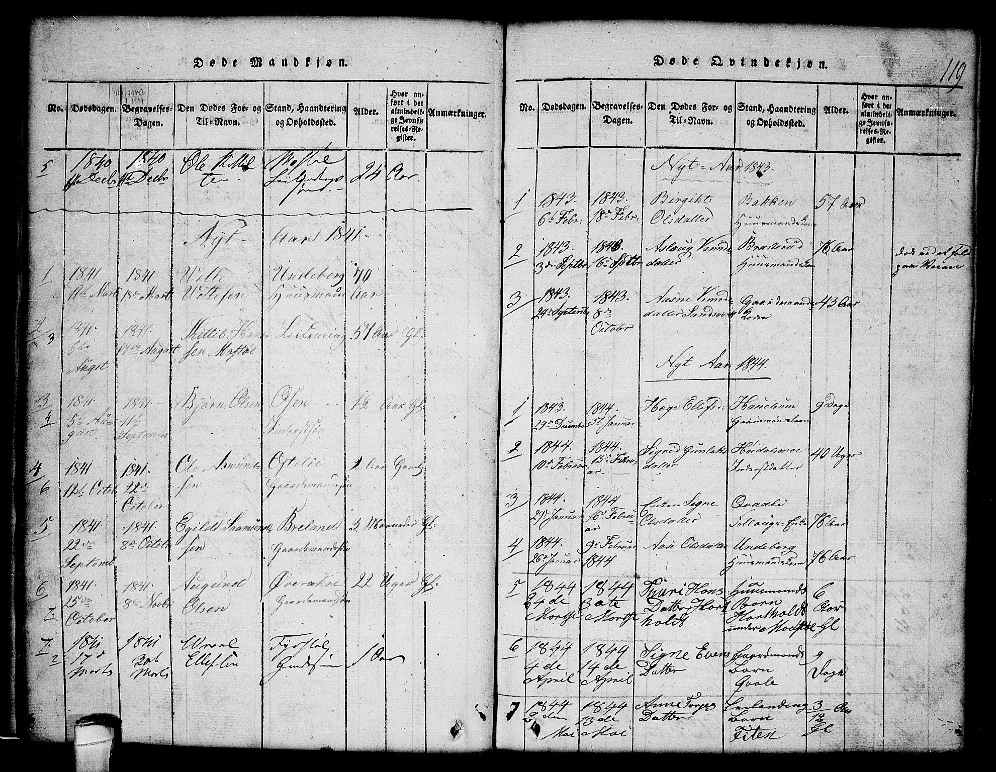 SAKO, Lårdal kirkebøker, G/Gc/L0001: Klokkerbok nr. III 1, 1815-1854, s. 119