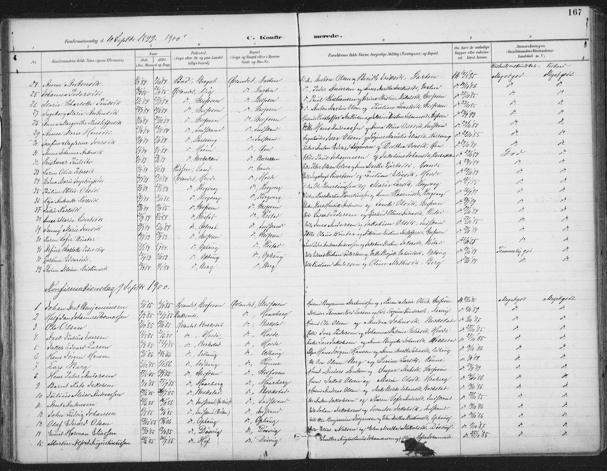 SAT, Ministerialprotokoller, klokkerbøker og fødselsregistre - Sør-Trøndelag, 659/L0743: Ministerialbok nr. 659A13, 1893-1910, s. 167