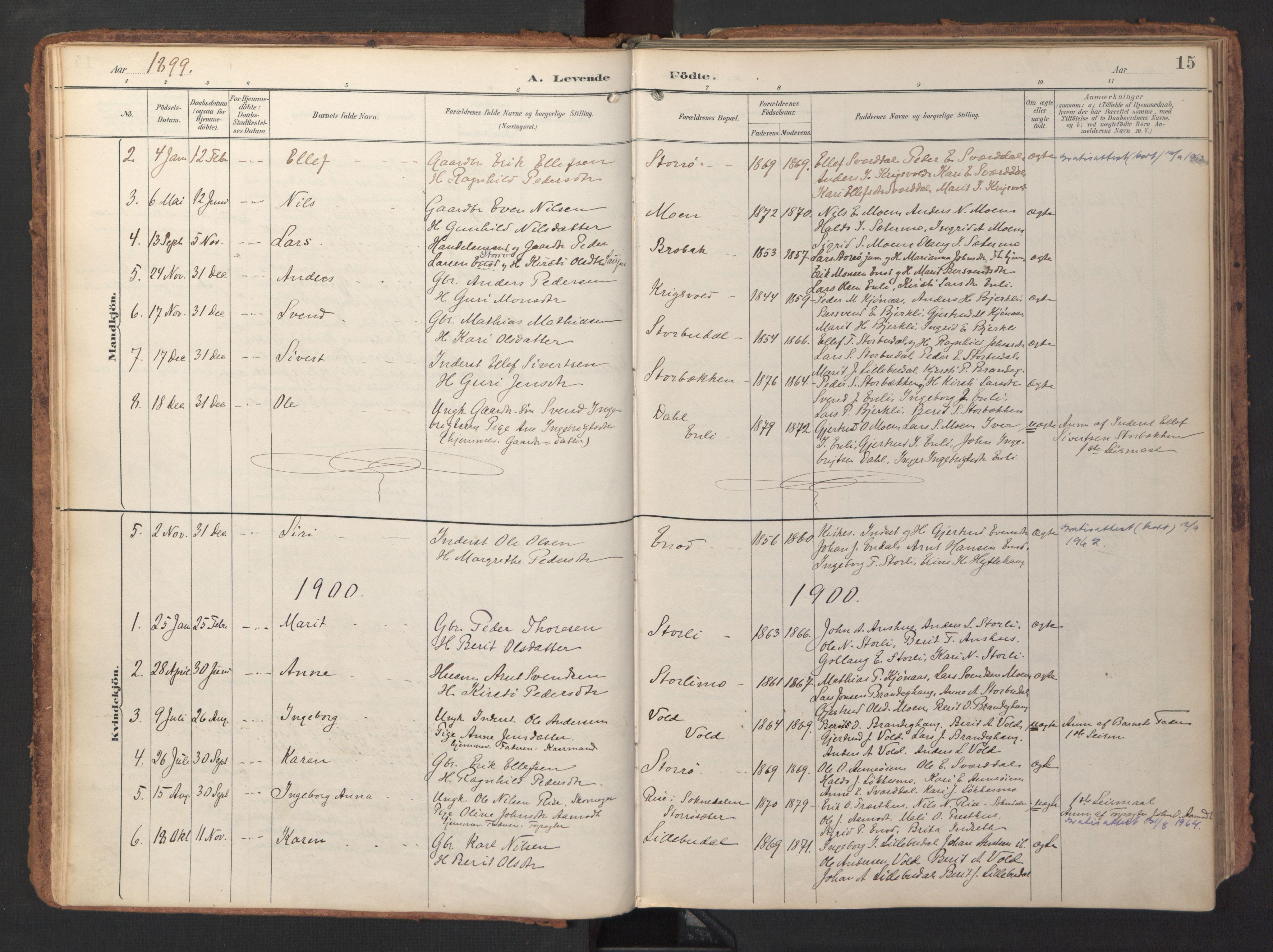 SAT, Ministerialprotokoller, klokkerbøker og fødselsregistre - Sør-Trøndelag, 690/L1050: Ministerialbok nr. 690A01, 1889-1929, s. 15