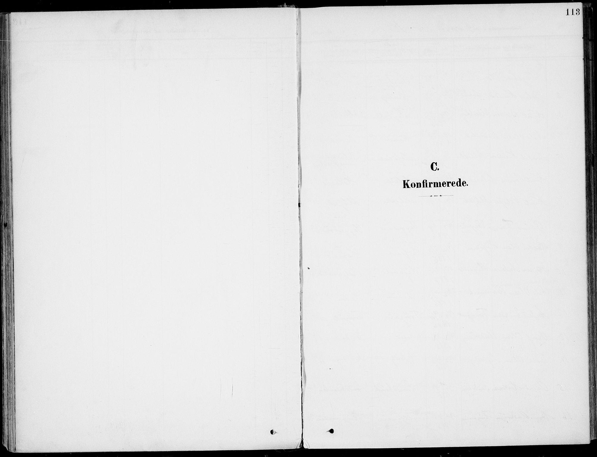 SAKO, Sigdal kirkebøker, F/Fb/L0002: Ministerialbok nr. II 2, 1901-1914, s. 113