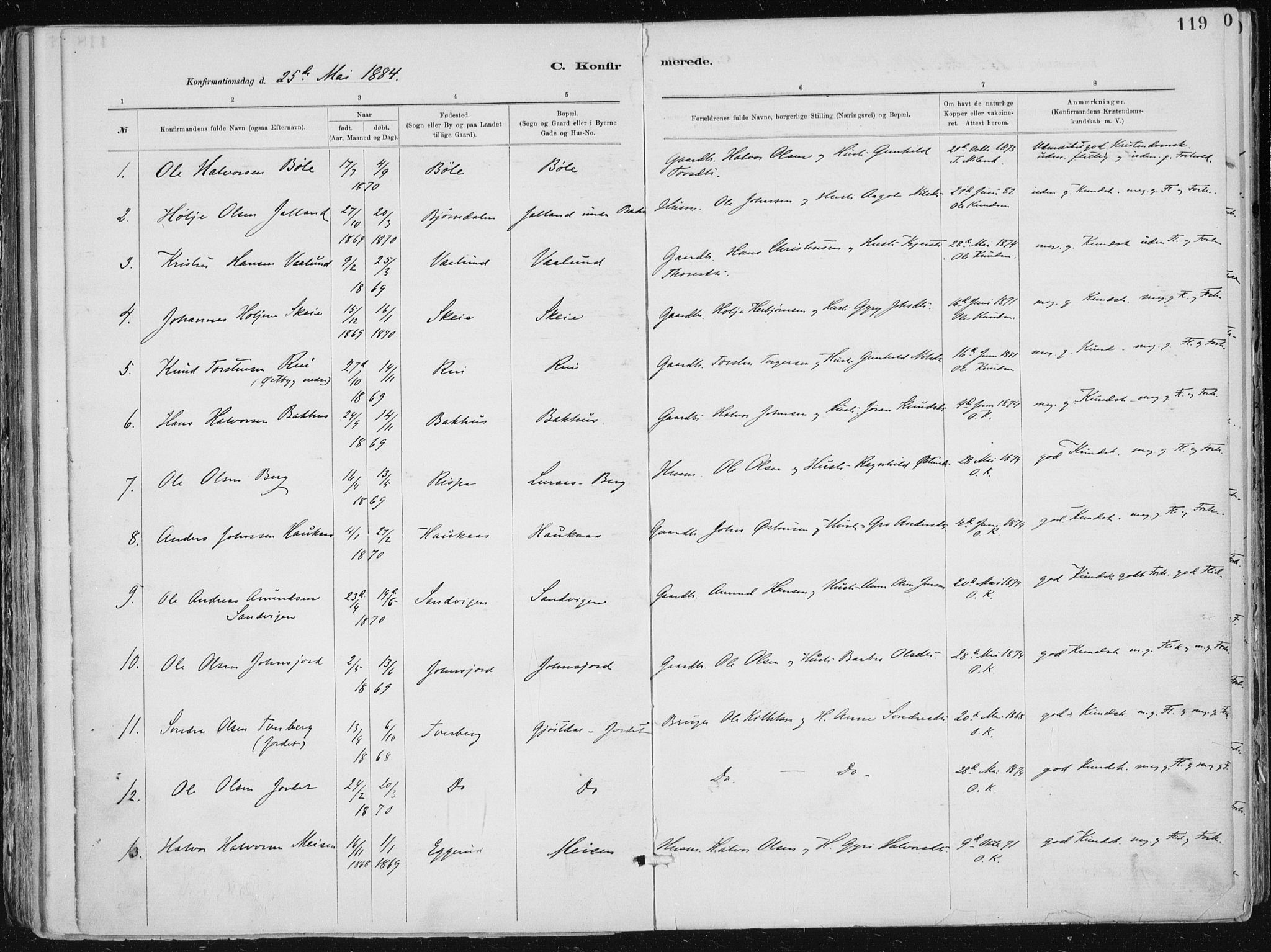 SAKO, Tinn kirkebøker, F/Fa/L0007: Ministerialbok nr. I 7, 1878-1922, s. 119