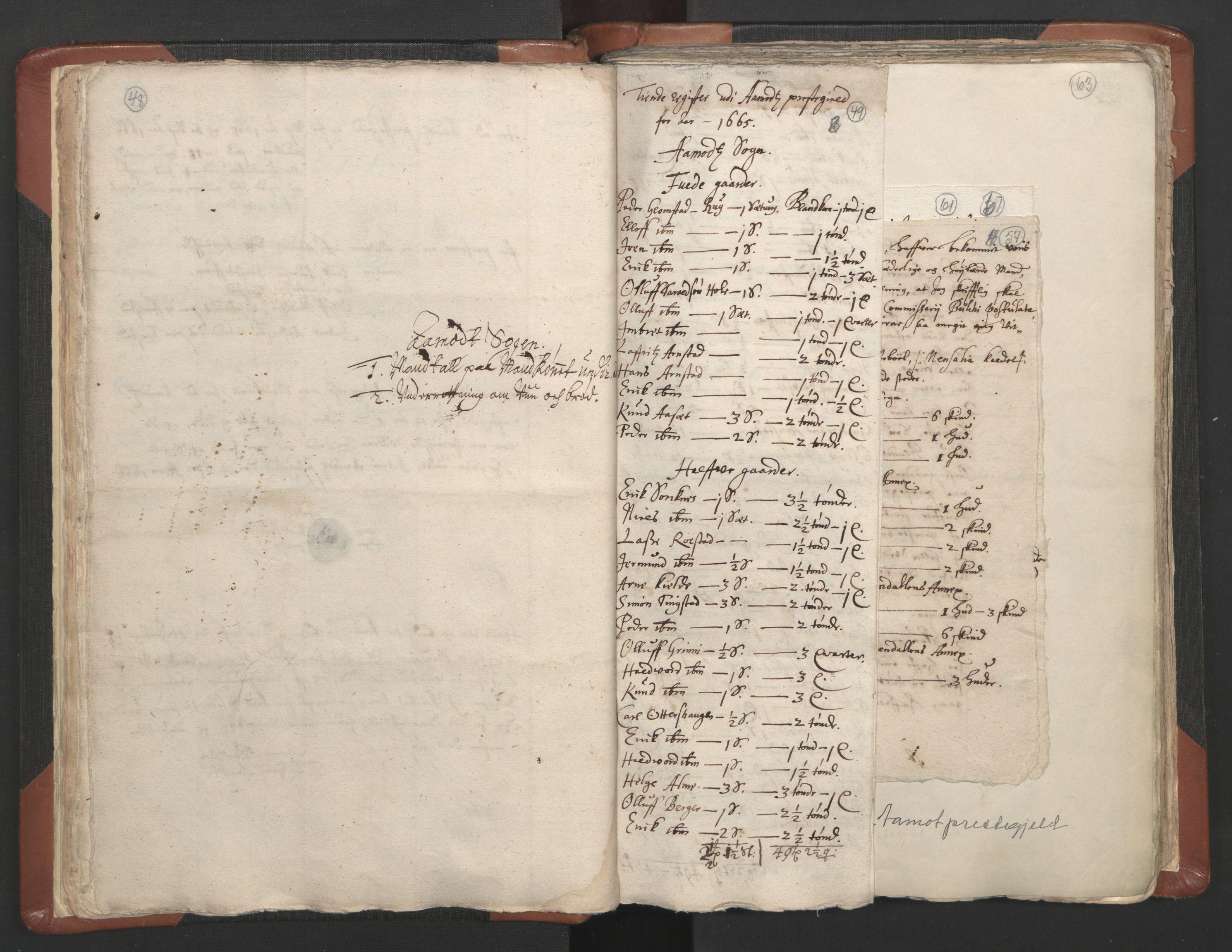 RA, Sogneprestenes manntall 1664-1666, nr. 5: Hedmark prosti, 1664-1666, s. 48-49