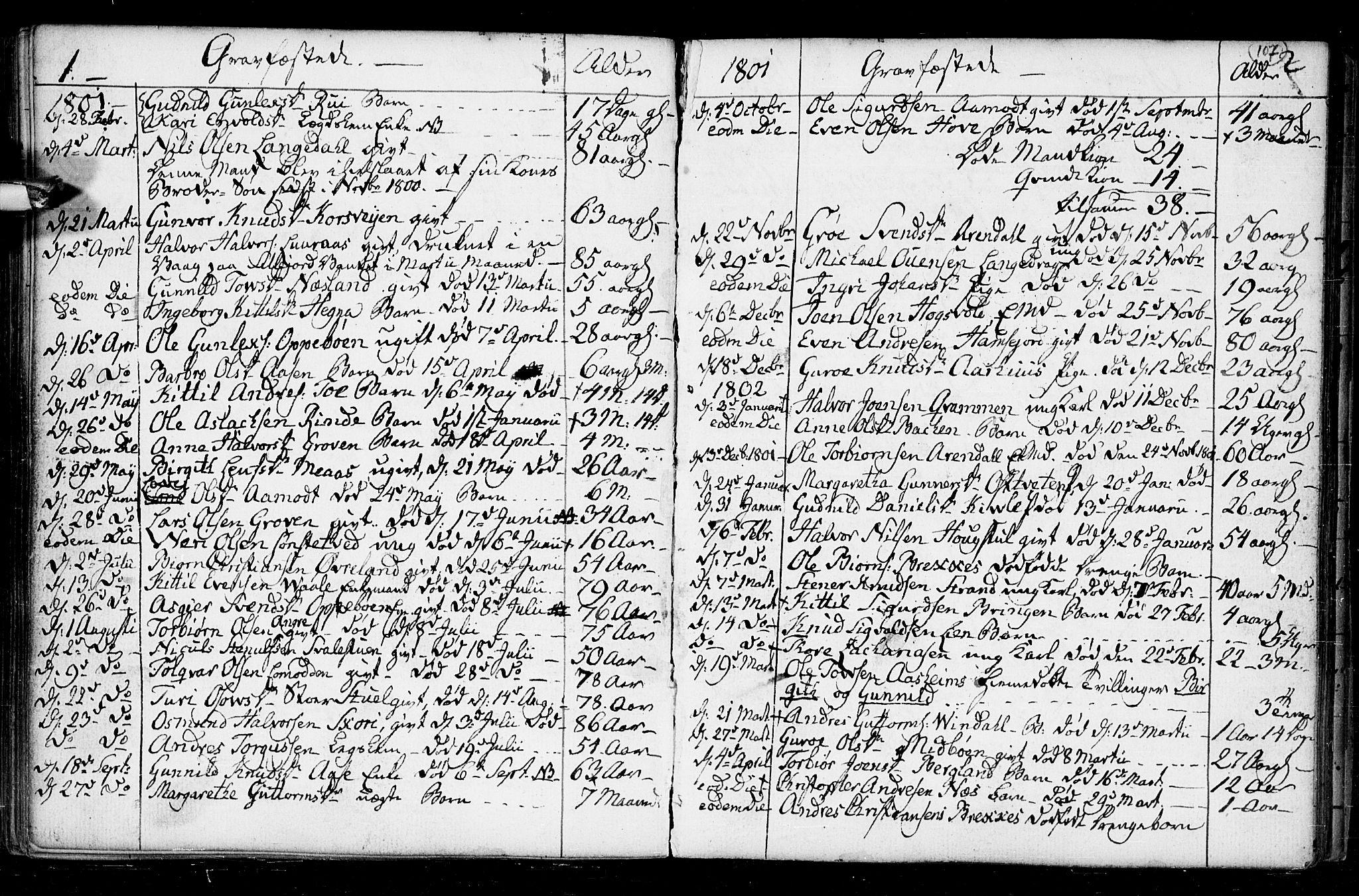 SAKO, Seljord kirkebøker, F/Fa/L0008: Ministerialbok nr. I 8, 1755-1814, s. 107