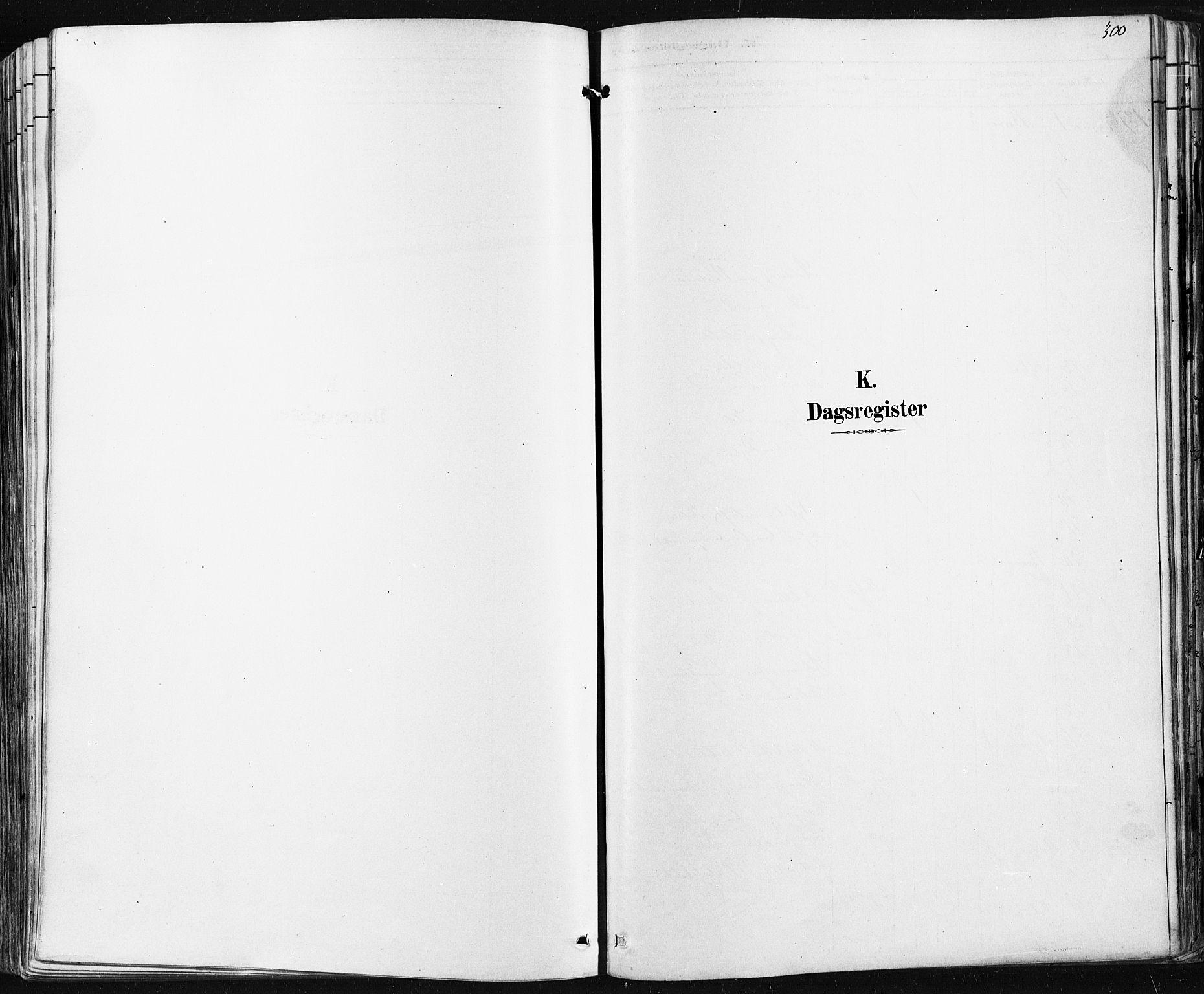 SAKO, Borre kirkebøker, F/Fa/L0009: Ministerialbok nr. I 9, 1878-1896, s. 300