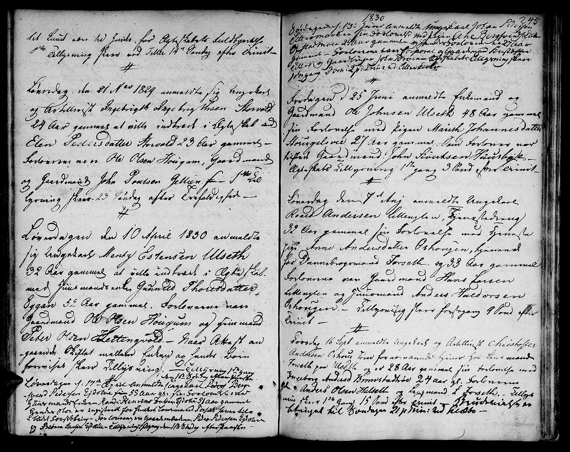 SAT, Ministerialprotokoller, klokkerbøker og fødselsregistre - Sør-Trøndelag, 618/L0438: Ministerialbok nr. 618A03, 1783-1815, s. 245