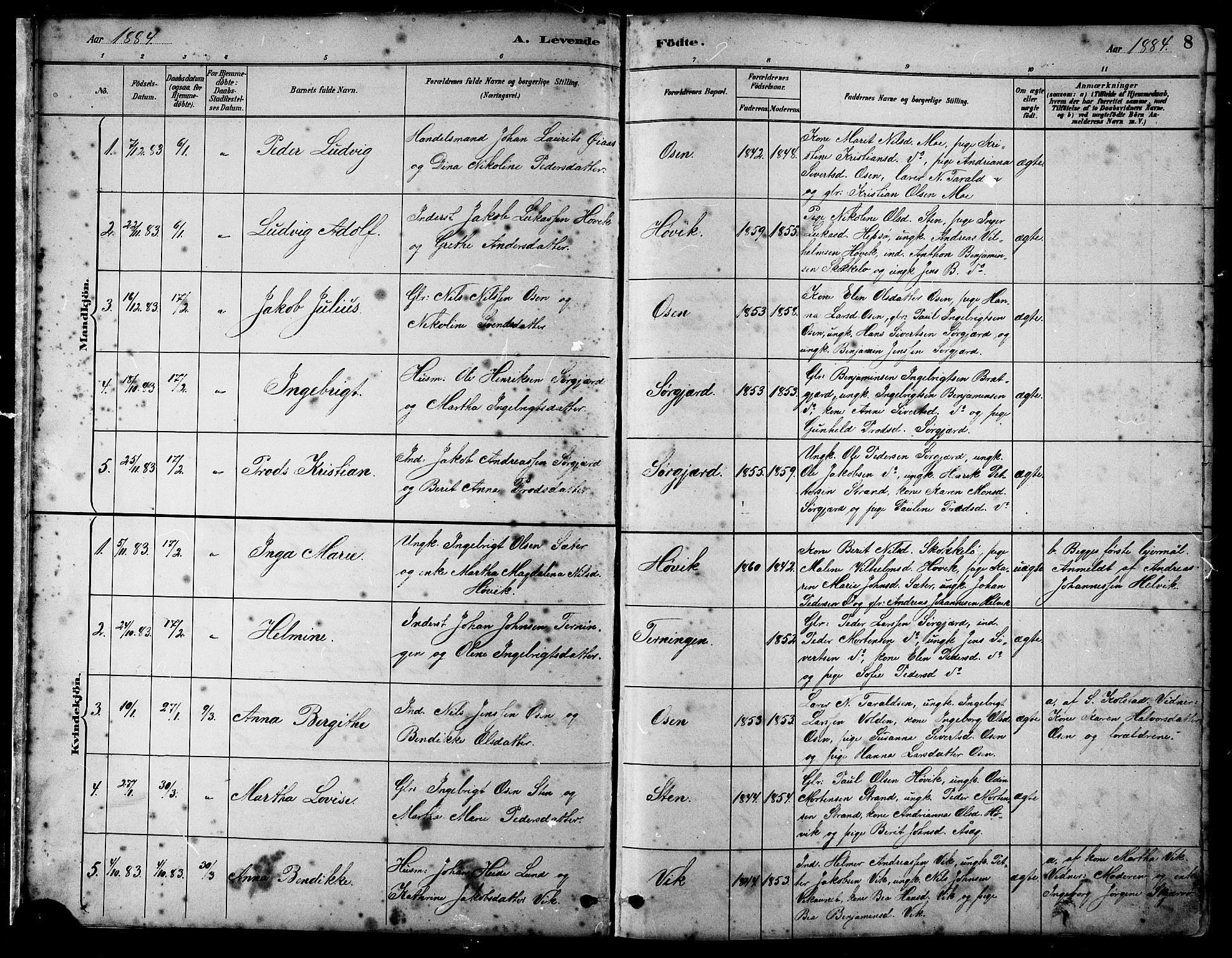 SAT, Ministerialprotokoller, klokkerbøker og fødselsregistre - Sør-Trøndelag, 658/L0726: Klokkerbok nr. 658C02, 1883-1908, s. 8