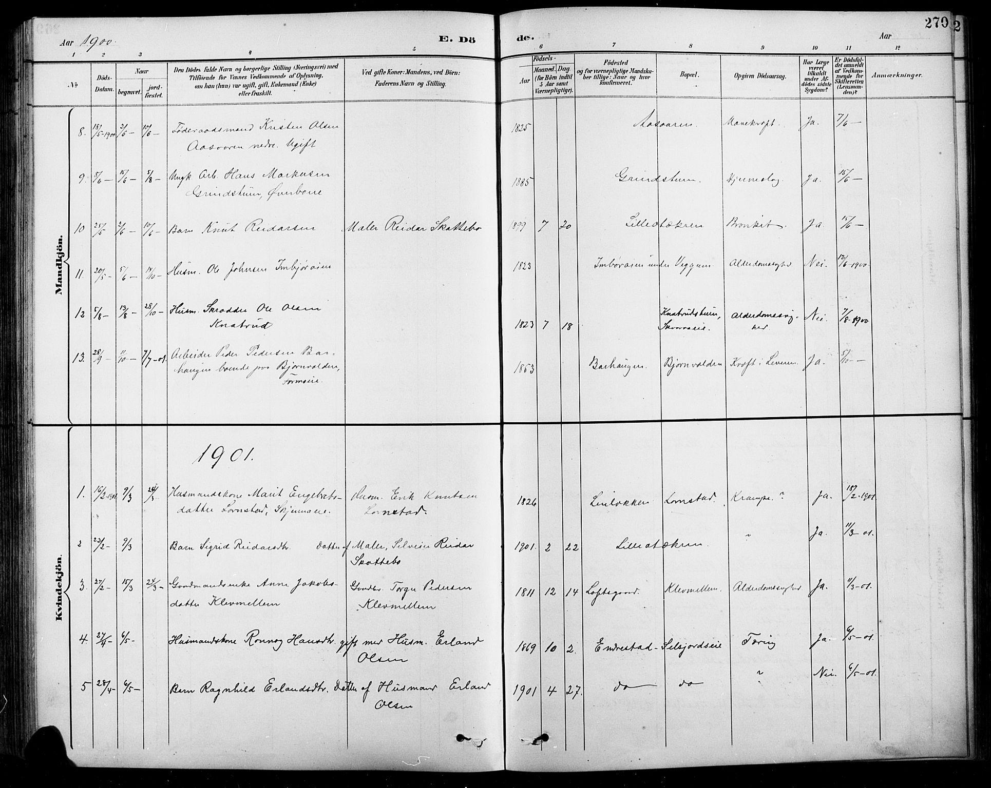 SAH, Sel prestekontor, Klokkerbok nr. 1, 1894-1923, s. 270