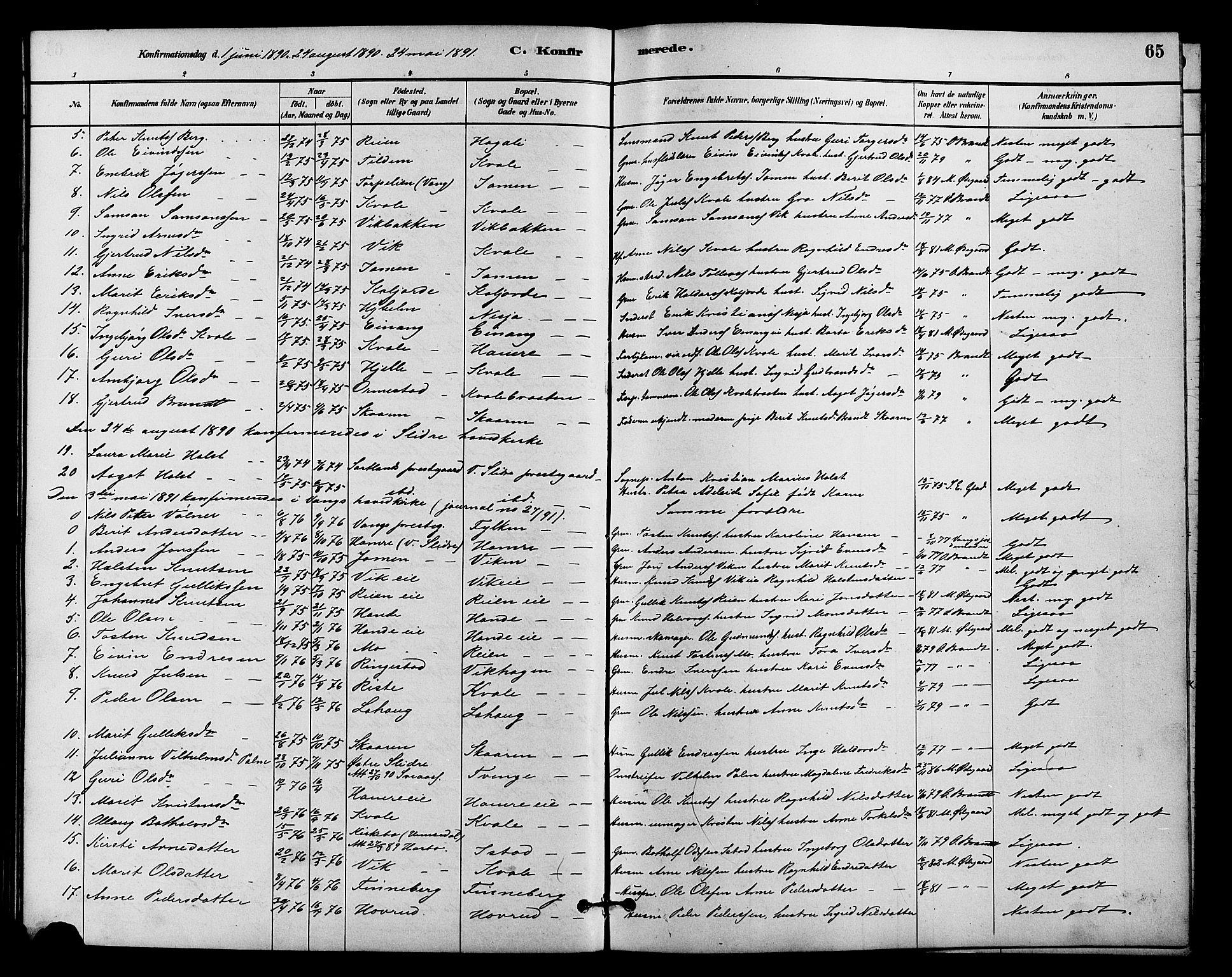 SAH, Vestre Slidre prestekontor, Klokkerbok nr. 4, 1881-1912, s. 65