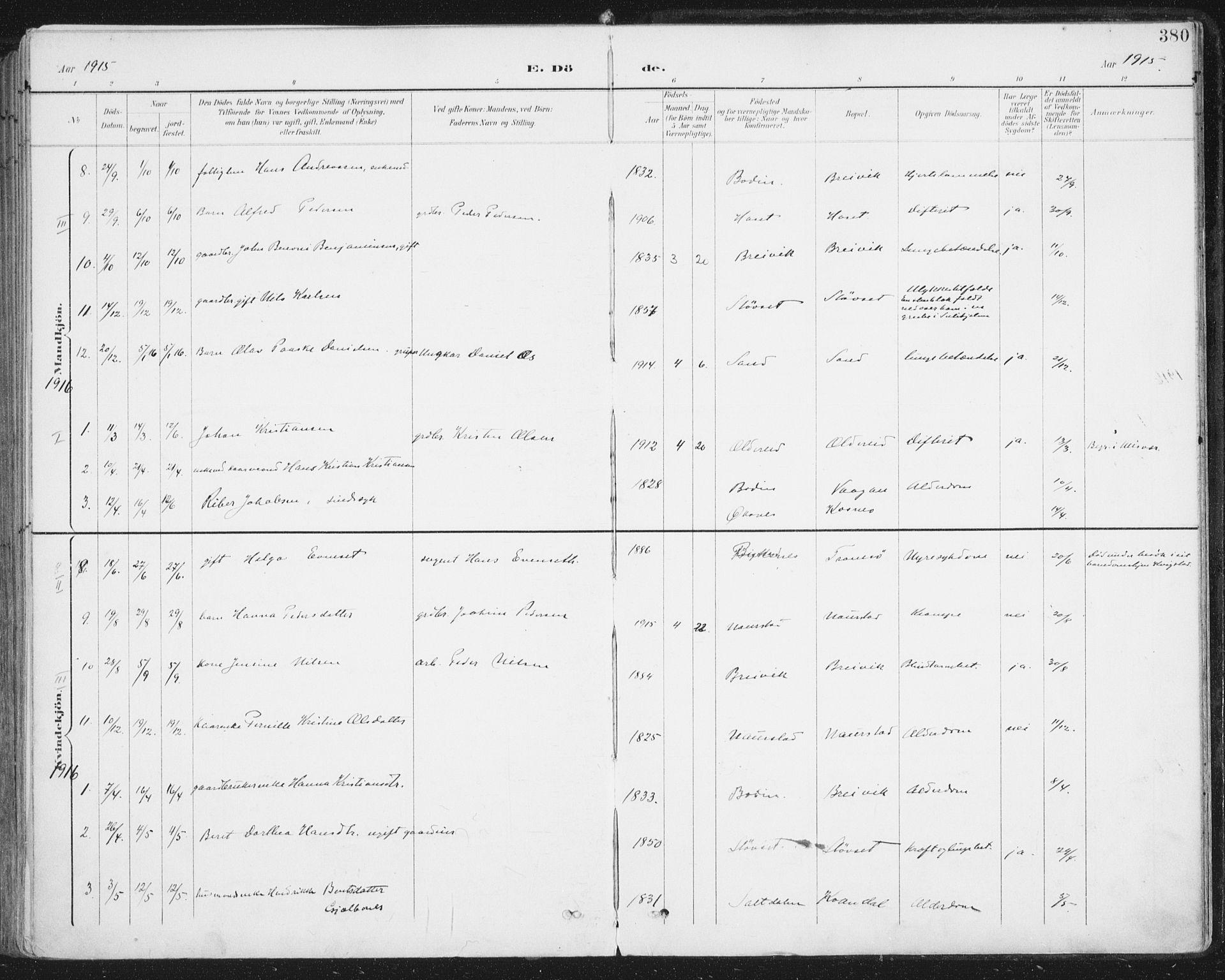 SAT, Ministerialprotokoller, klokkerbøker og fødselsregistre - Nordland, 852/L0741: Ministerialbok nr. 852A11, 1894-1917, s. 380