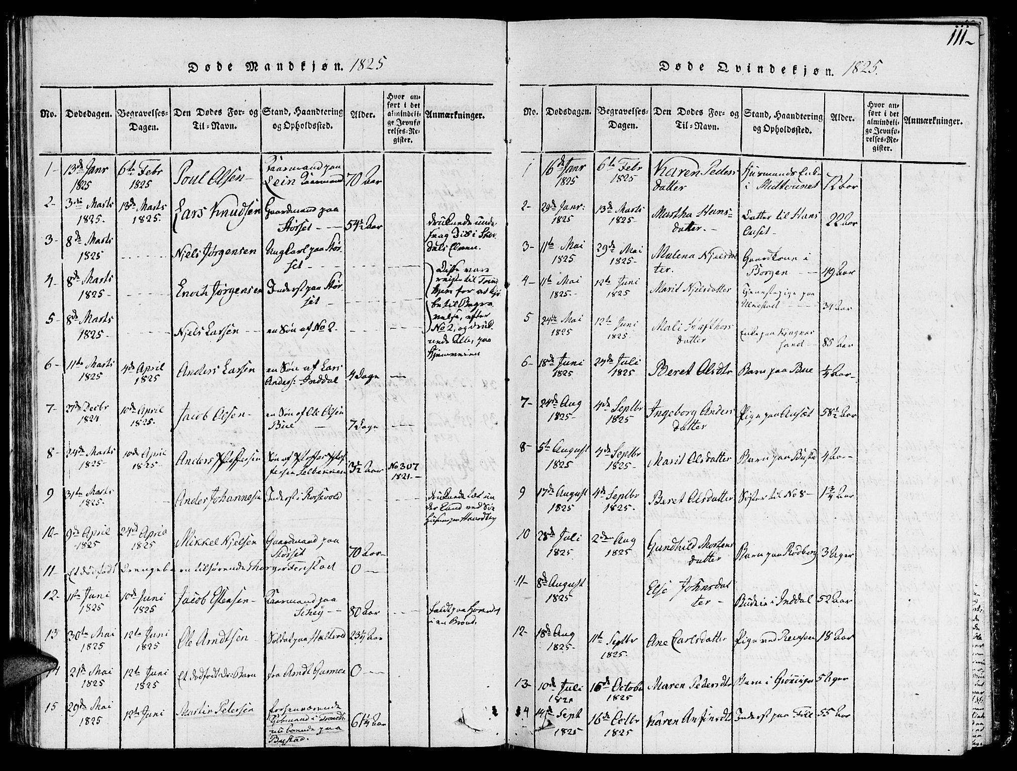SAT, Ministerialprotokoller, klokkerbøker og fødselsregistre - Sør-Trøndelag, 646/L0608: Ministerialbok nr. 646A06, 1816-1825, s. 111