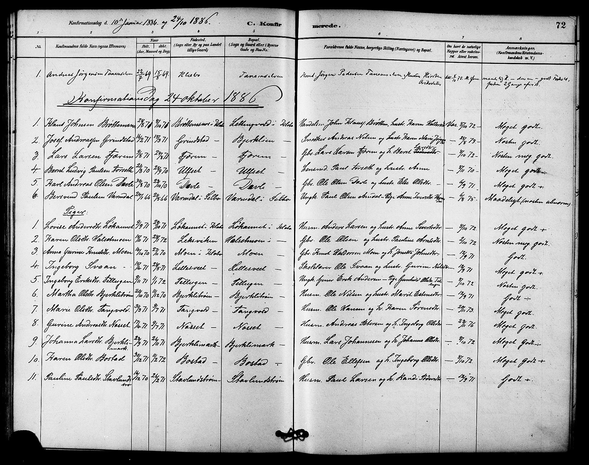 SAT, Ministerialprotokoller, klokkerbøker og fødselsregistre - Sør-Trøndelag, 618/L0444: Ministerialbok nr. 618A07, 1880-1898, s. 72