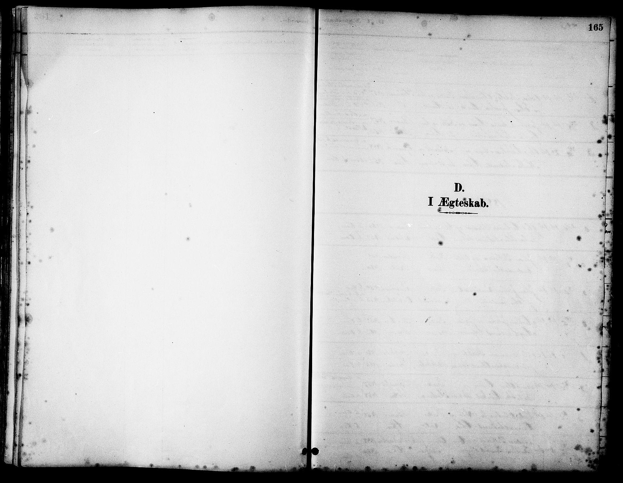 SAT, Ministerialprotokoller, klokkerbøker og fødselsregistre - Sør-Trøndelag, 658/L0726: Klokkerbok nr. 658C02, 1883-1908, s. 165