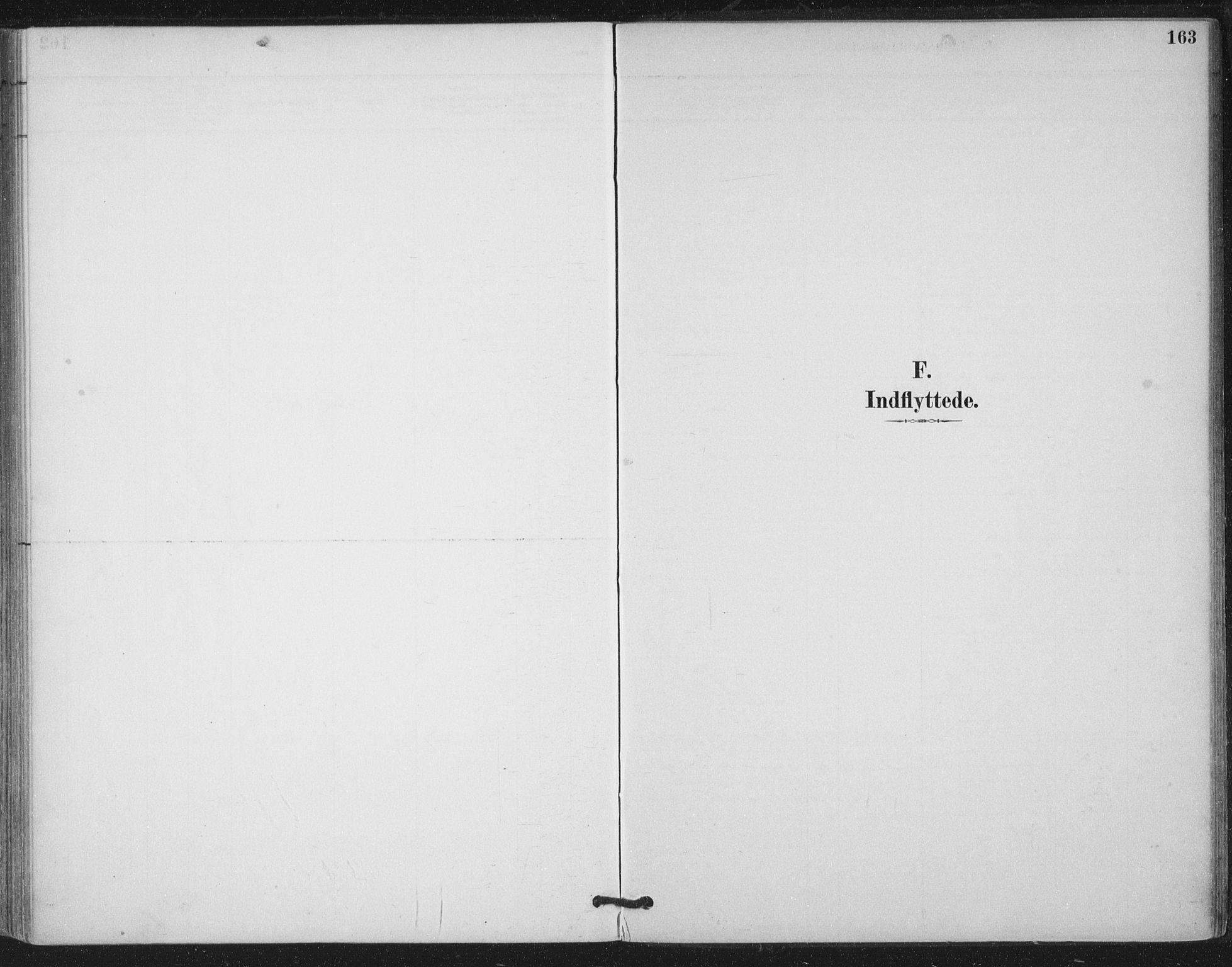 SAT, Ministerialprotokoller, klokkerbøker og fødselsregistre - Nord-Trøndelag, 780/L0644: Ministerialbok nr. 780A08, 1886-1903, s. 163