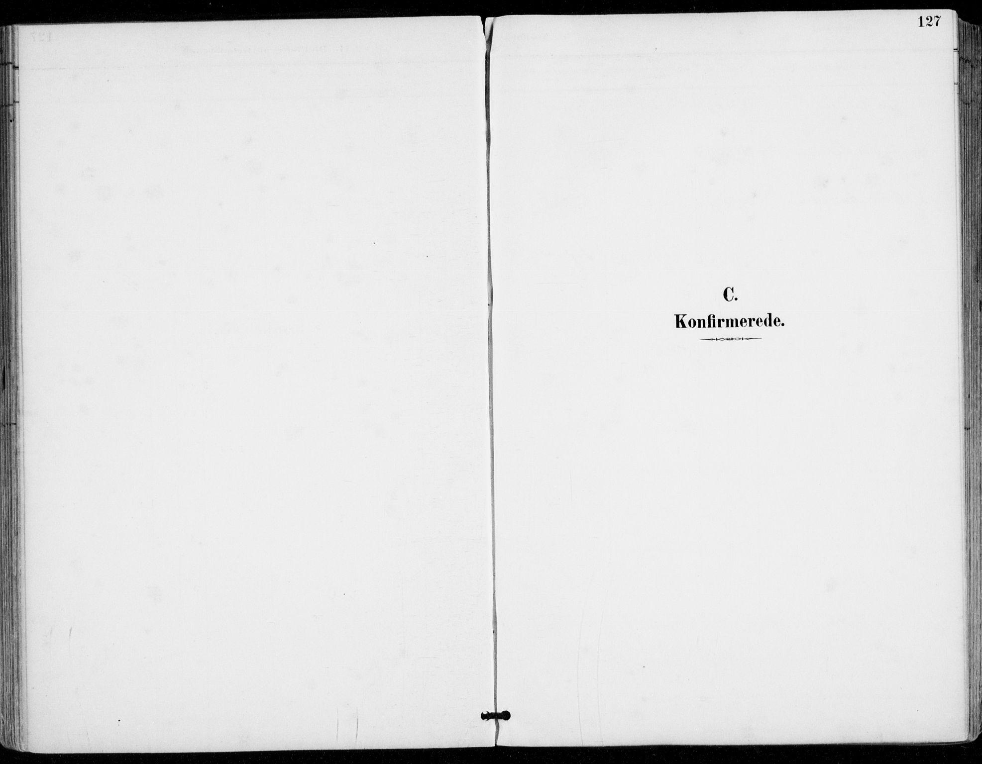 SAKO, Sylling kirkebøker, F/Fa/L0001: Ministerialbok nr. 1, 1883-1910, s. 127