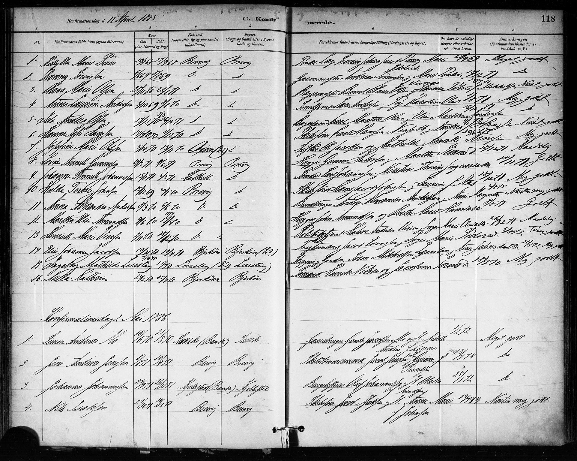 SAKO, Brevik kirkebøker, F/Fa/L0007: Ministerialbok nr. 7, 1882-1900, s. 118