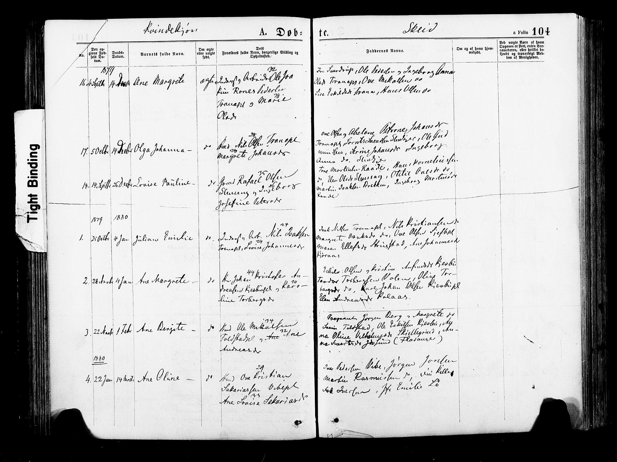 SAT, Ministerialprotokoller, klokkerbøker og fødselsregistre - Nord-Trøndelag, 735/L0348: Ministerialbok nr. 735A09 /2, 1873-1883, s. 104