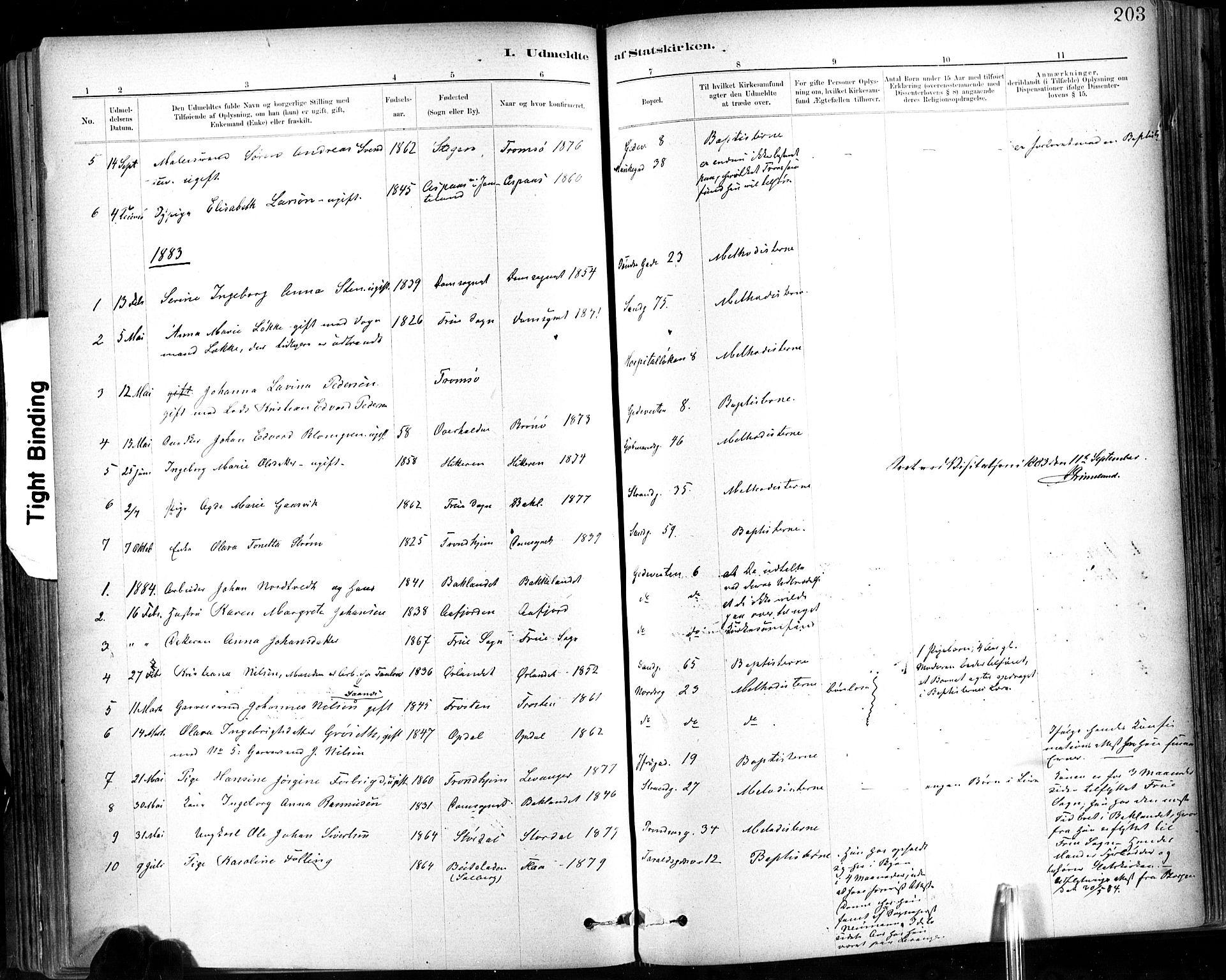 SAT, Ministerialprotokoller, klokkerbøker og fødselsregistre - Sør-Trøndelag, 602/L0120: Ministerialbok nr. 602A18, 1880-1913, s. 203