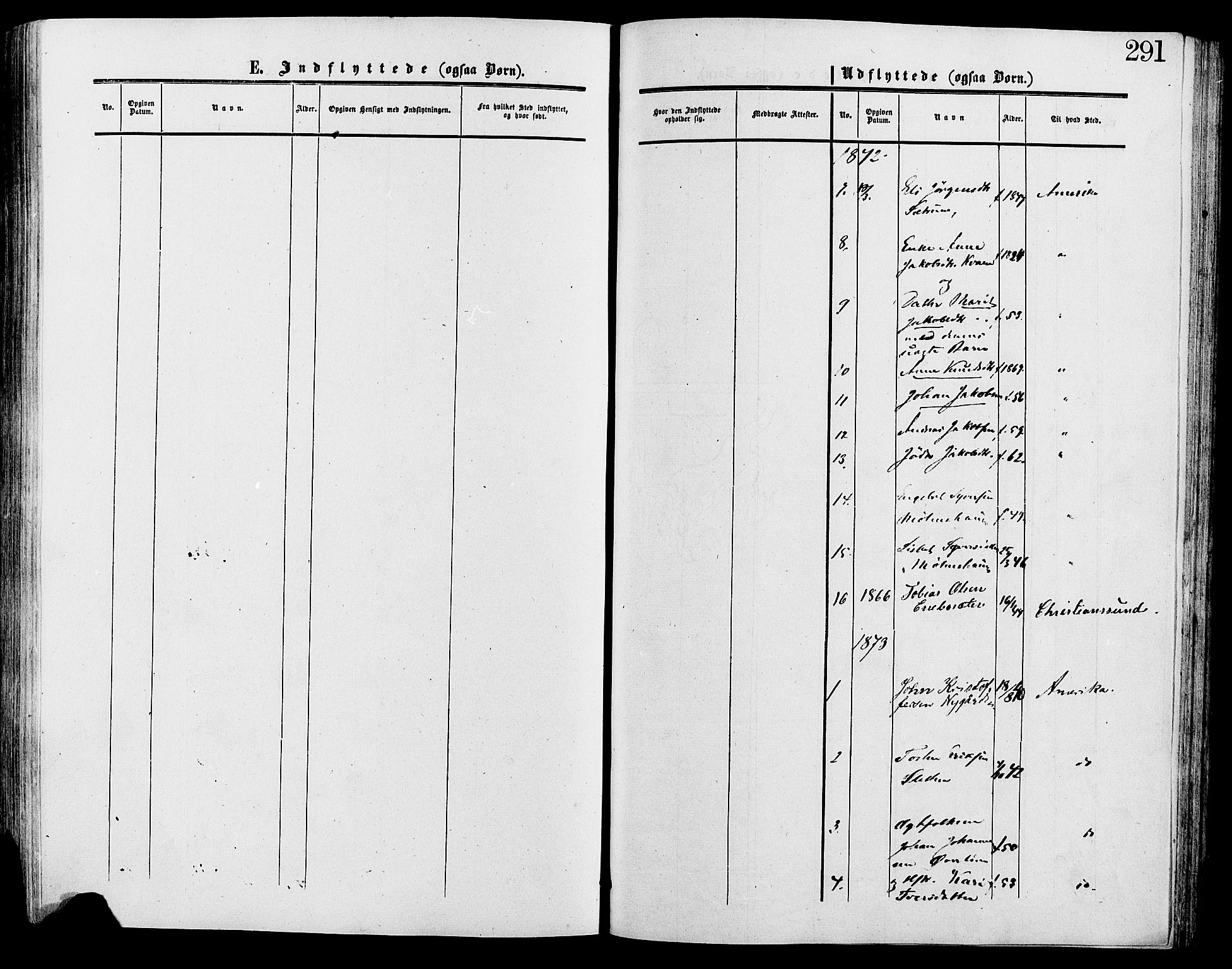 SAH, Lesja prestekontor, Ministerialbok nr. 9, 1854-1889, s. 291