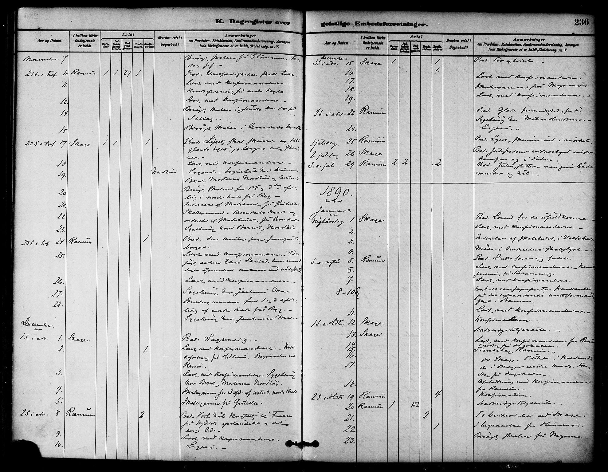 SAT, Ministerialprotokoller, klokkerbøker og fødselsregistre - Nord-Trøndelag, 764/L0555: Ministerialbok nr. 764A10, 1881-1896, s. 236