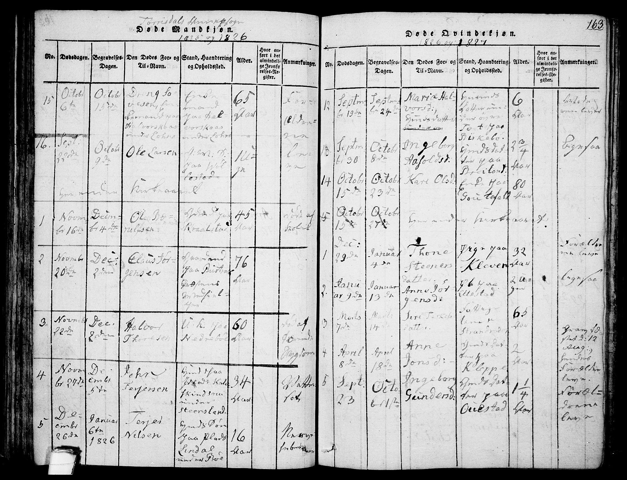 SAKO, Drangedal kirkebøker, F/Fa/L0005: Ministerialbok nr. 5 /2, 1814-1831, s. 163