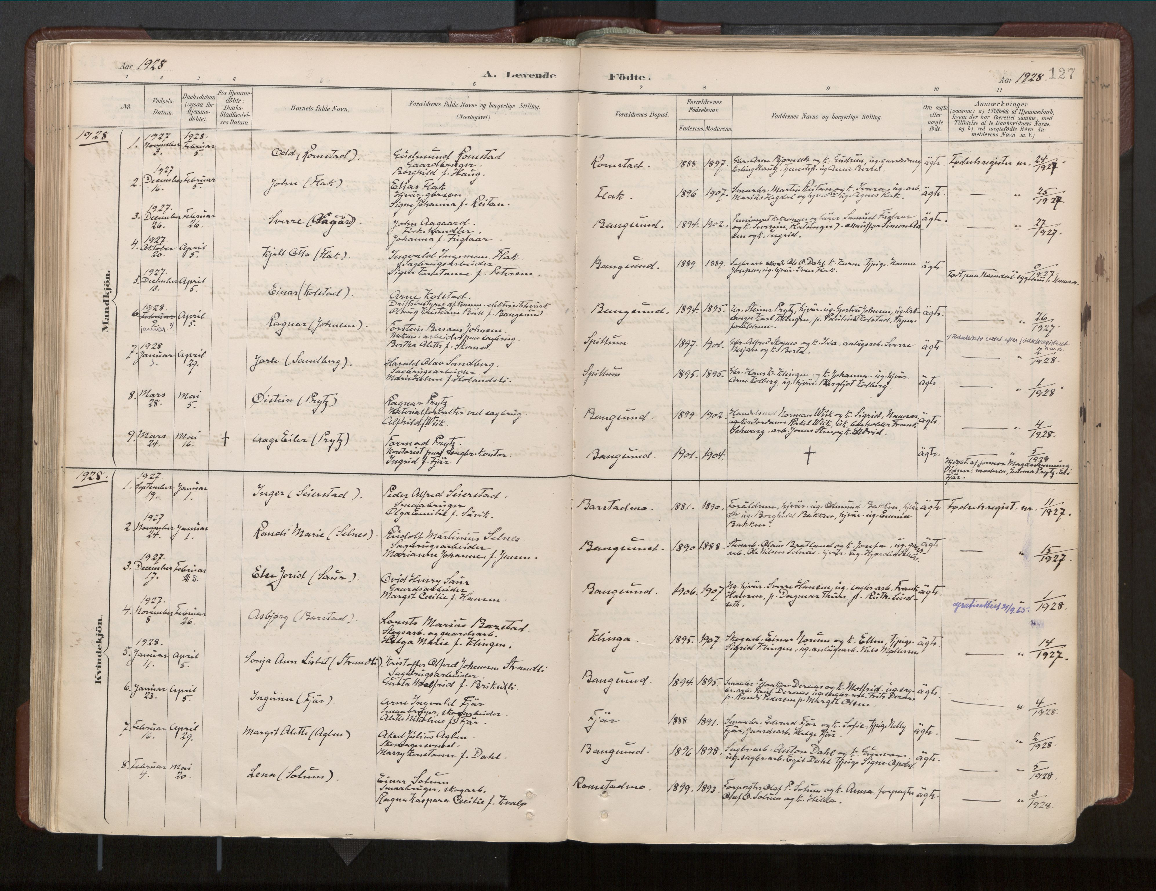SAT, Ministerialprotokoller, klokkerbøker og fødselsregistre - Nord-Trøndelag, 770/L0589: Ministerialbok nr. 770A03, 1887-1929, s. 127