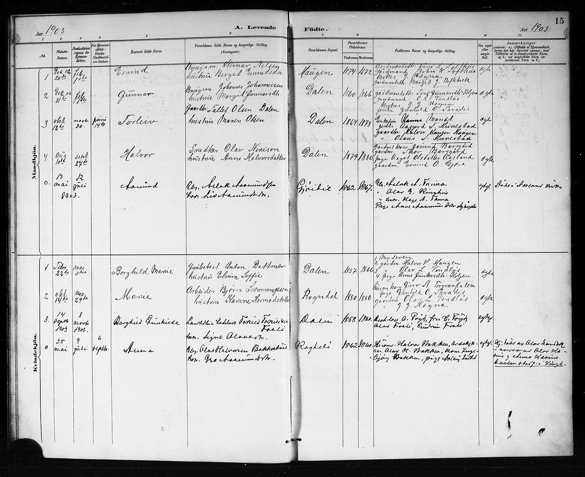 SAKO, Lårdal kirkebøker, G/Gb/L0003: Klokkerbok nr. II 3, 1889-1920, s. 15