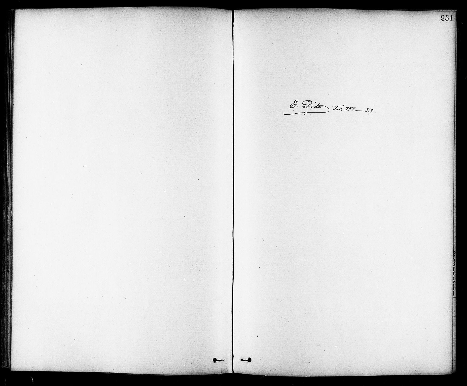 SAT, Ministerialprotokoller, klokkerbøker og fødselsregistre - Sør-Trøndelag, 691/L1094: Klokkerbok nr. 691C05, 1879-1911, s. 251